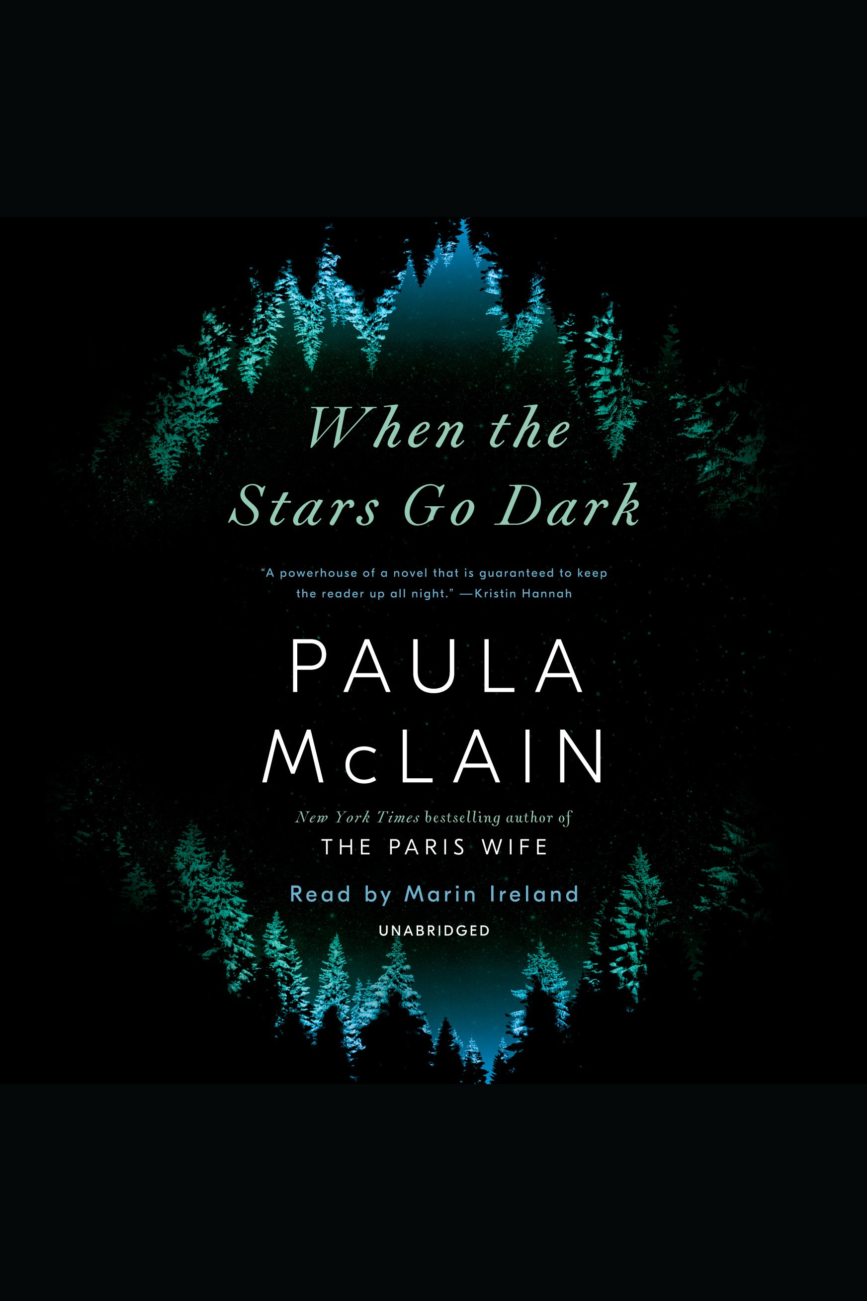 When the Stars Go Dark A Novel