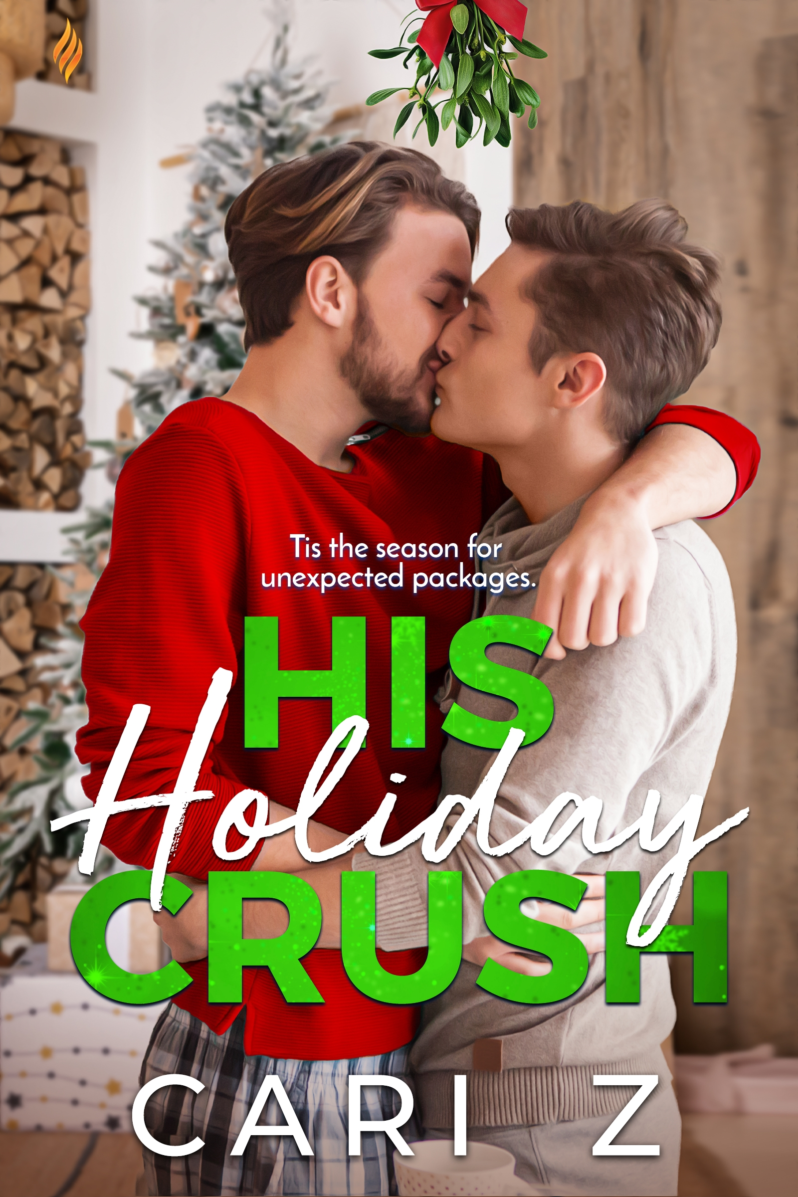 Cover Image of His Holiday Crush
