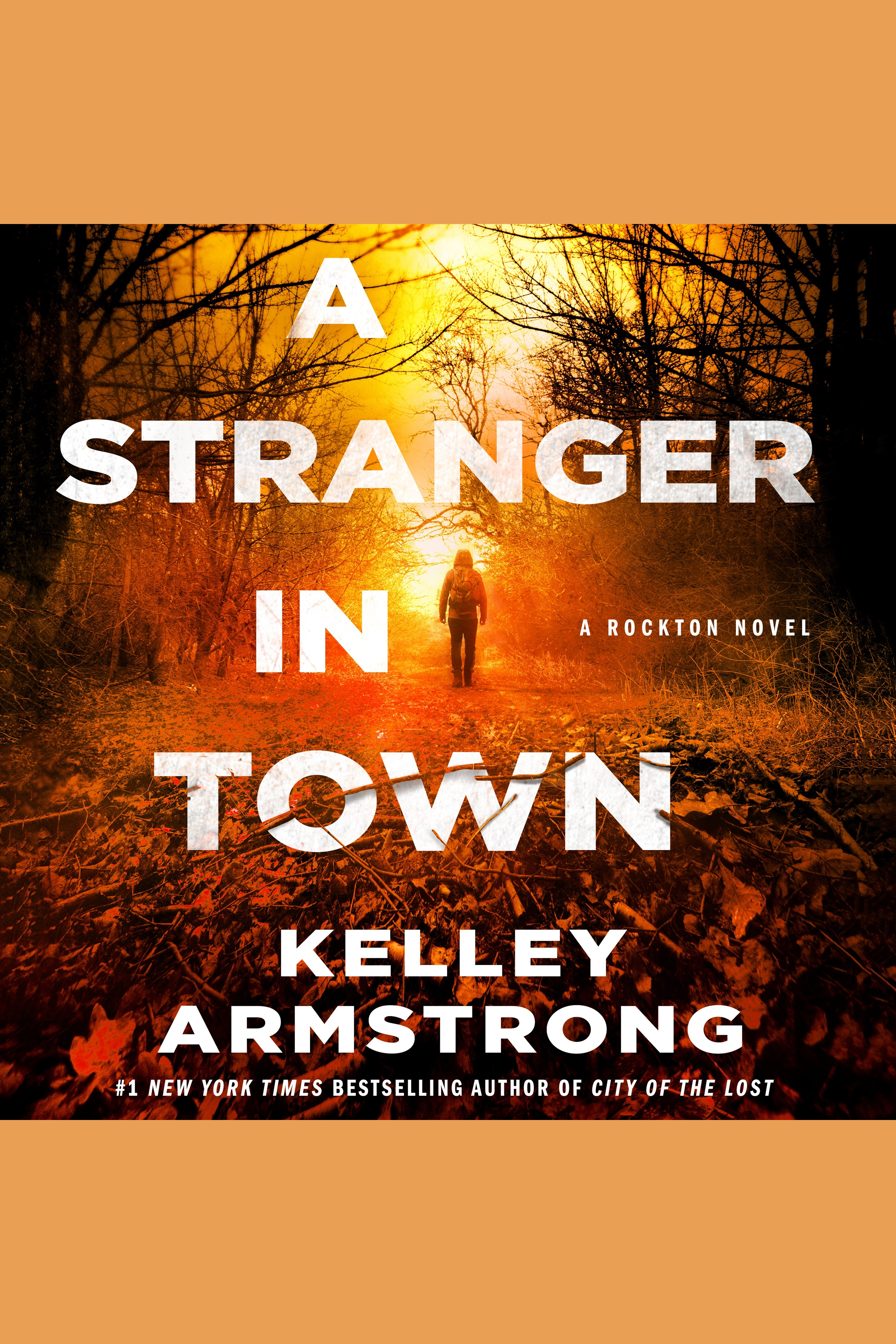 Stranger in Town, A