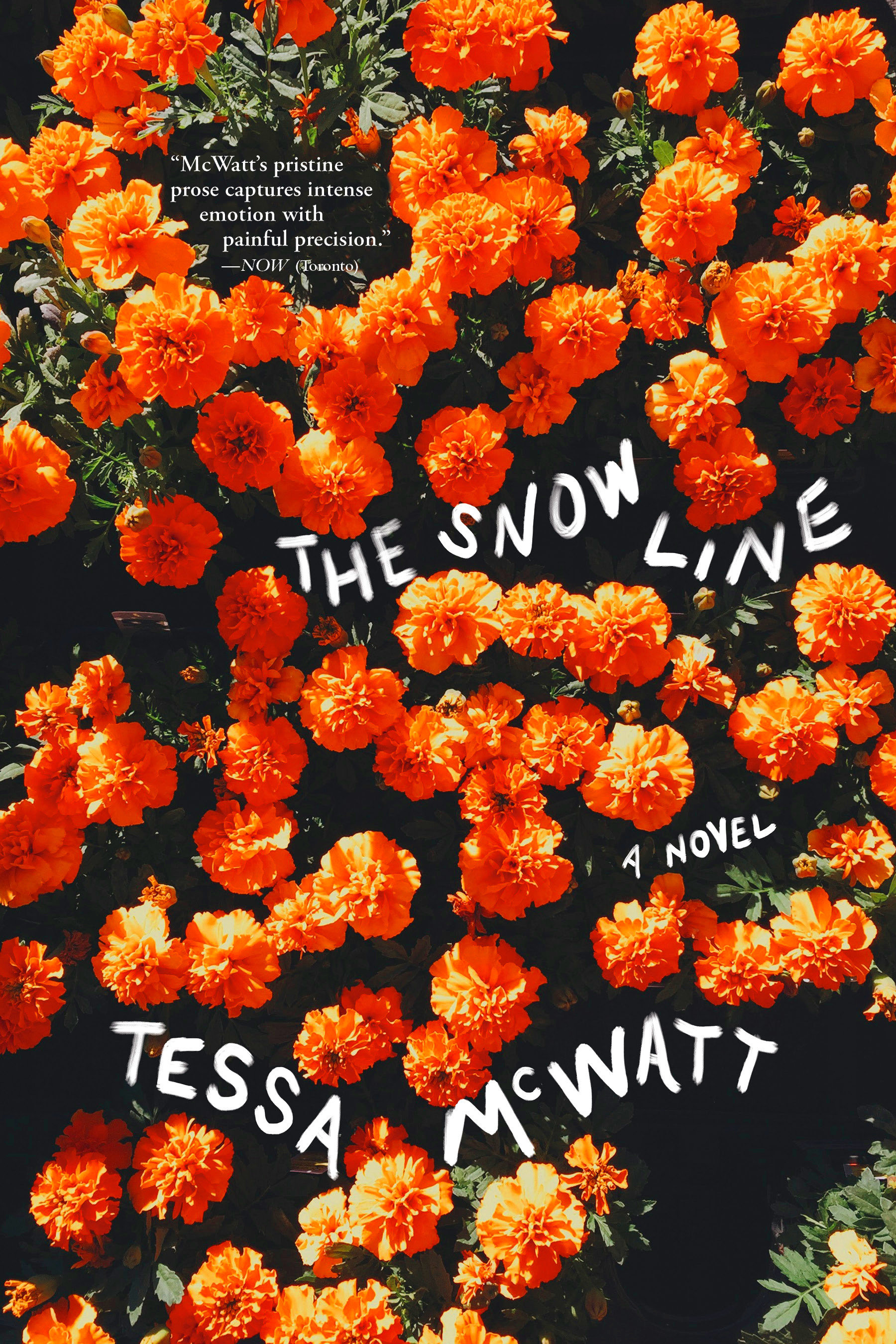 Cover Image of The Snow Line