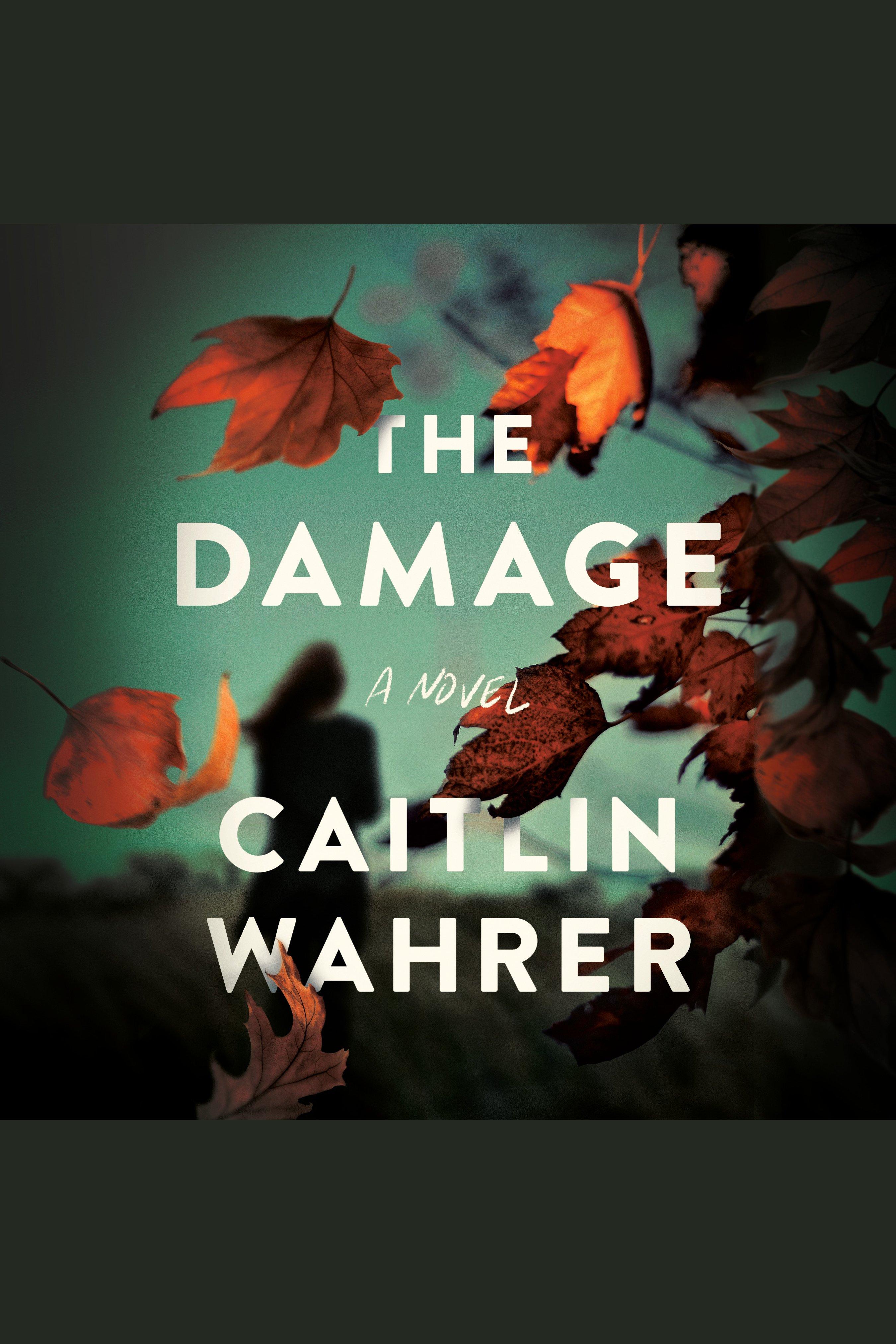 Damage, The A Novel
