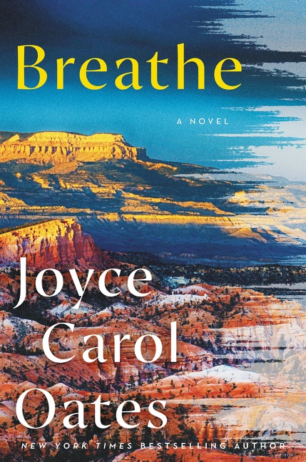 Breathe A Novel