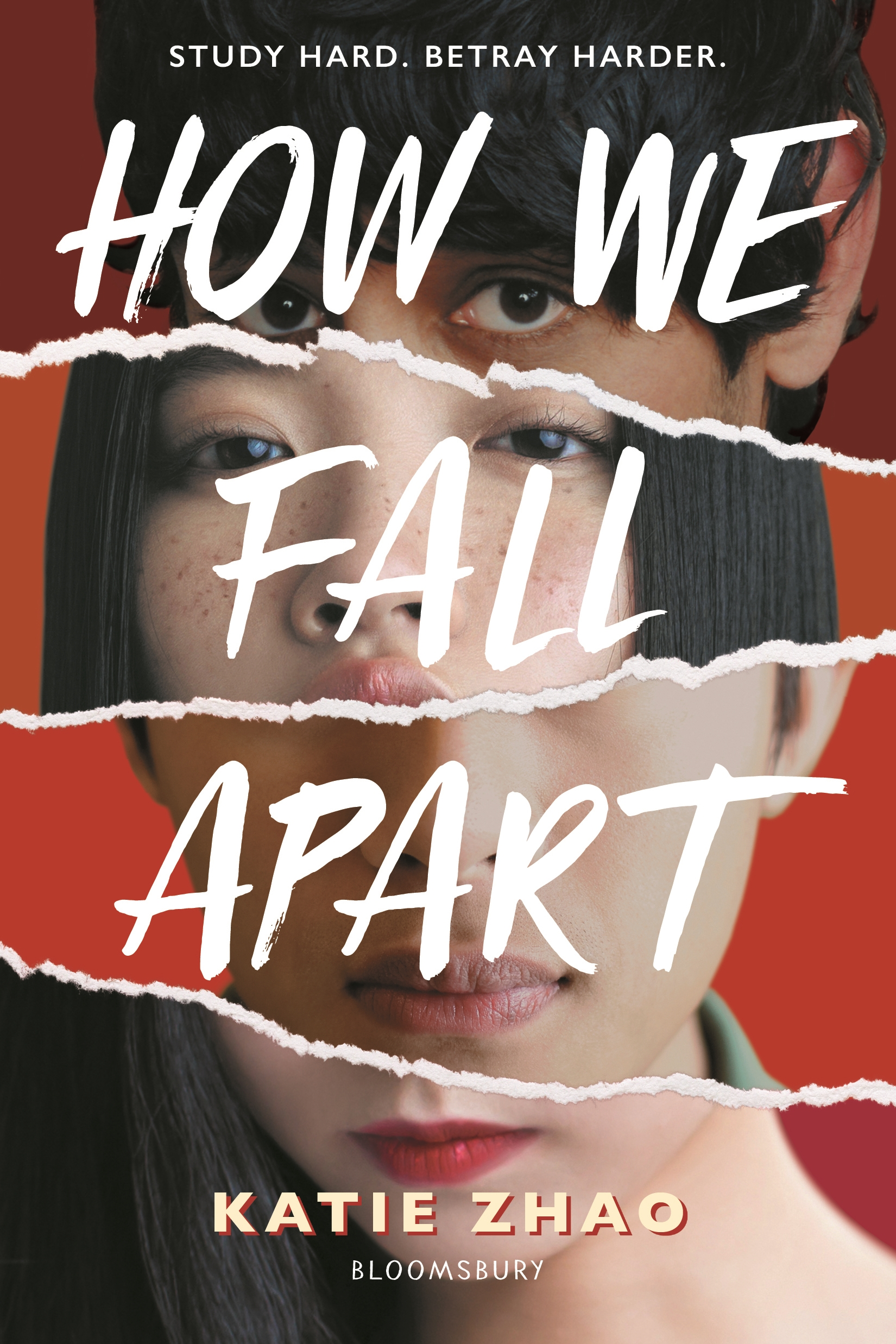 Cover Image of How We Fall Apart