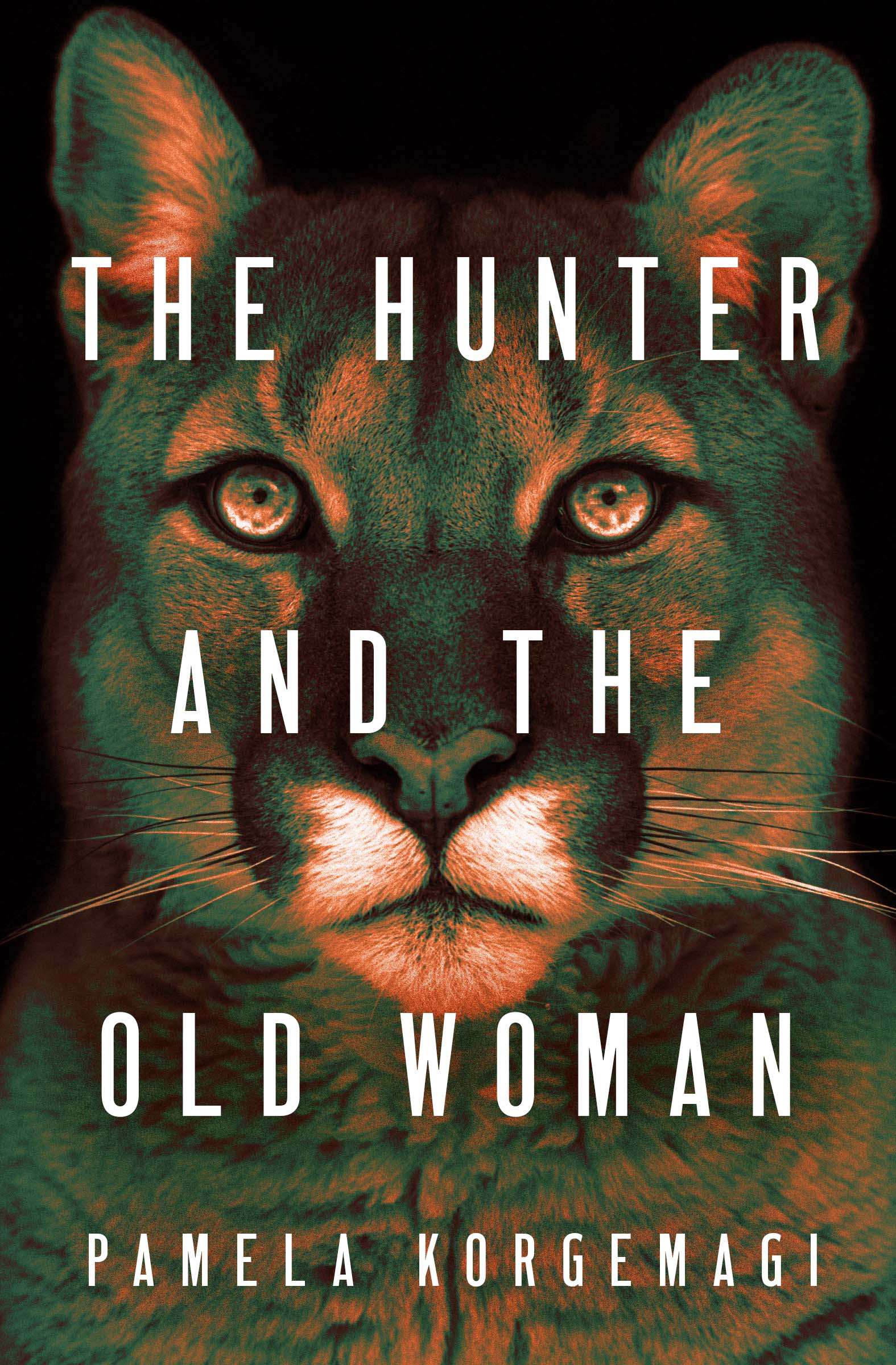 Cover Image of The Hunter and the Old Woman