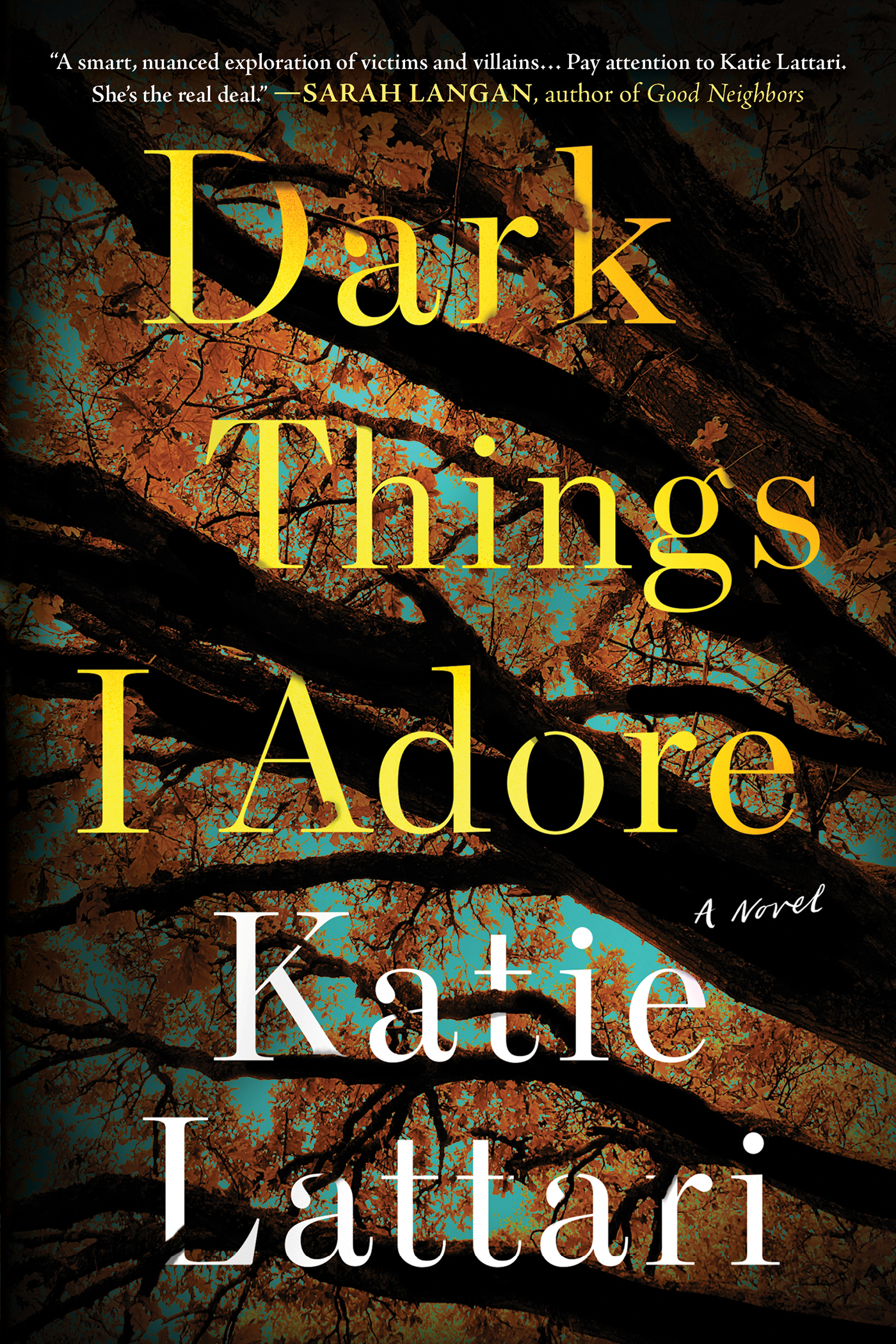 Dark Things I Adore A Novel