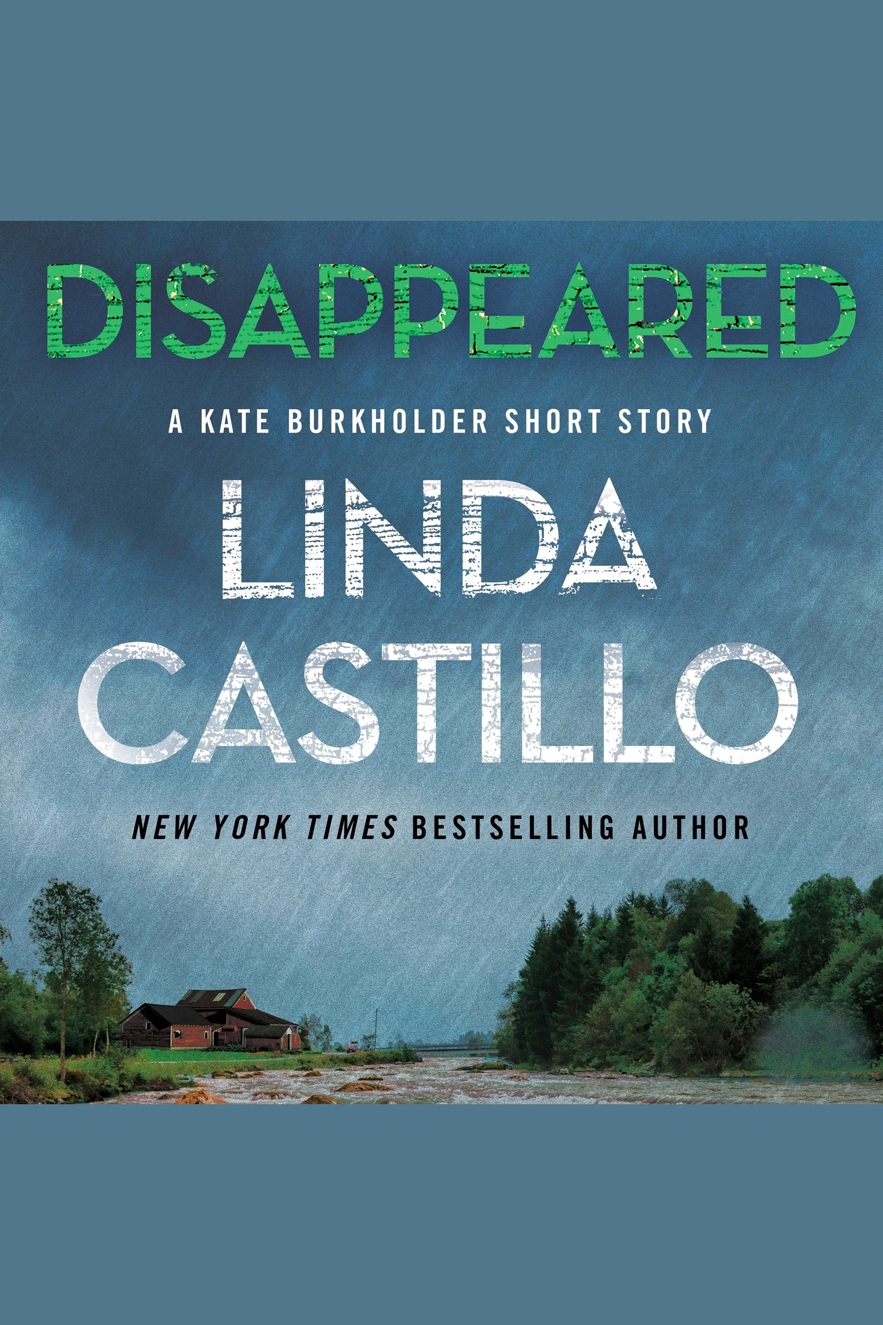 Disappeared A Kate Burkholder Short Mystery
