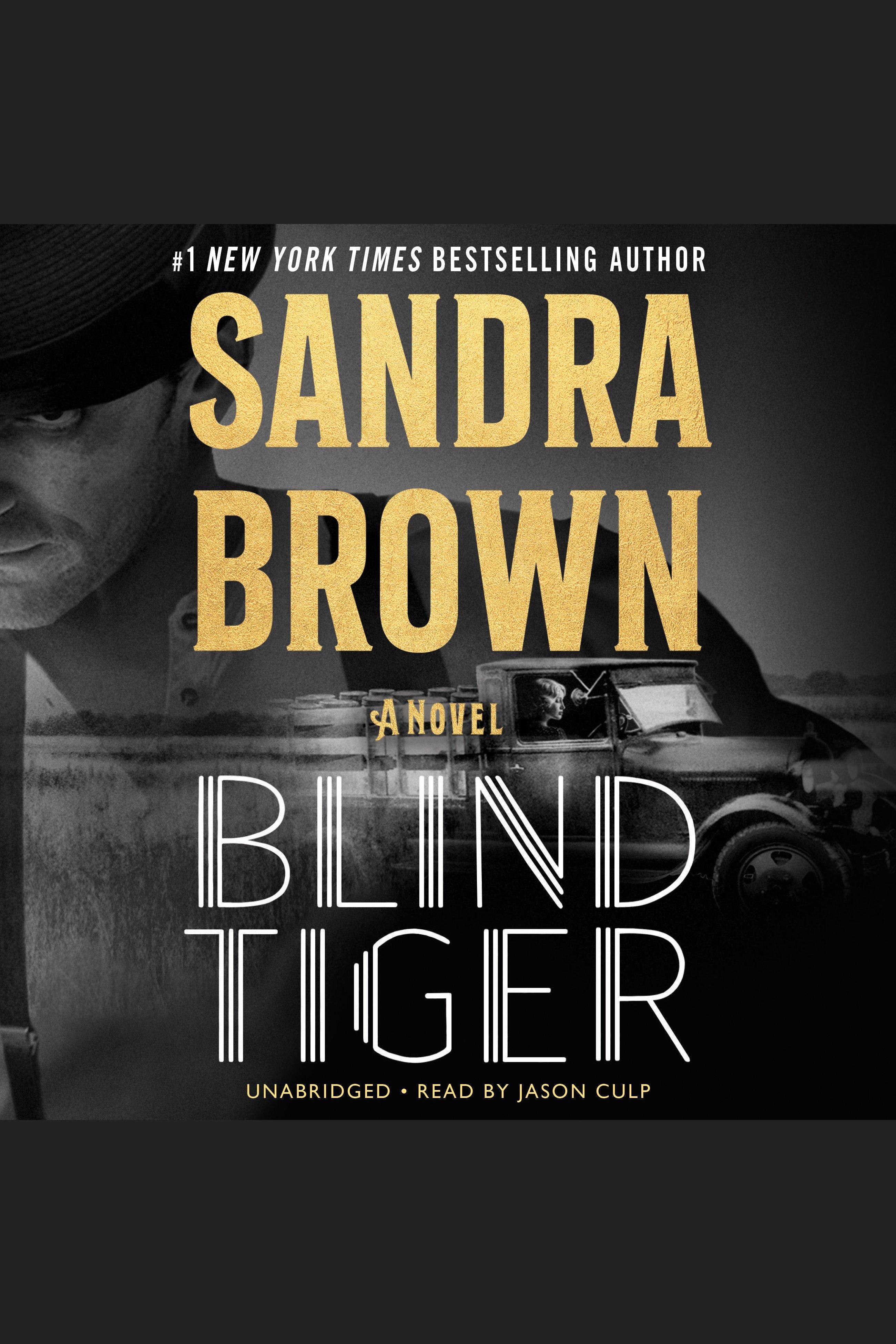 Blind Tiger a novel