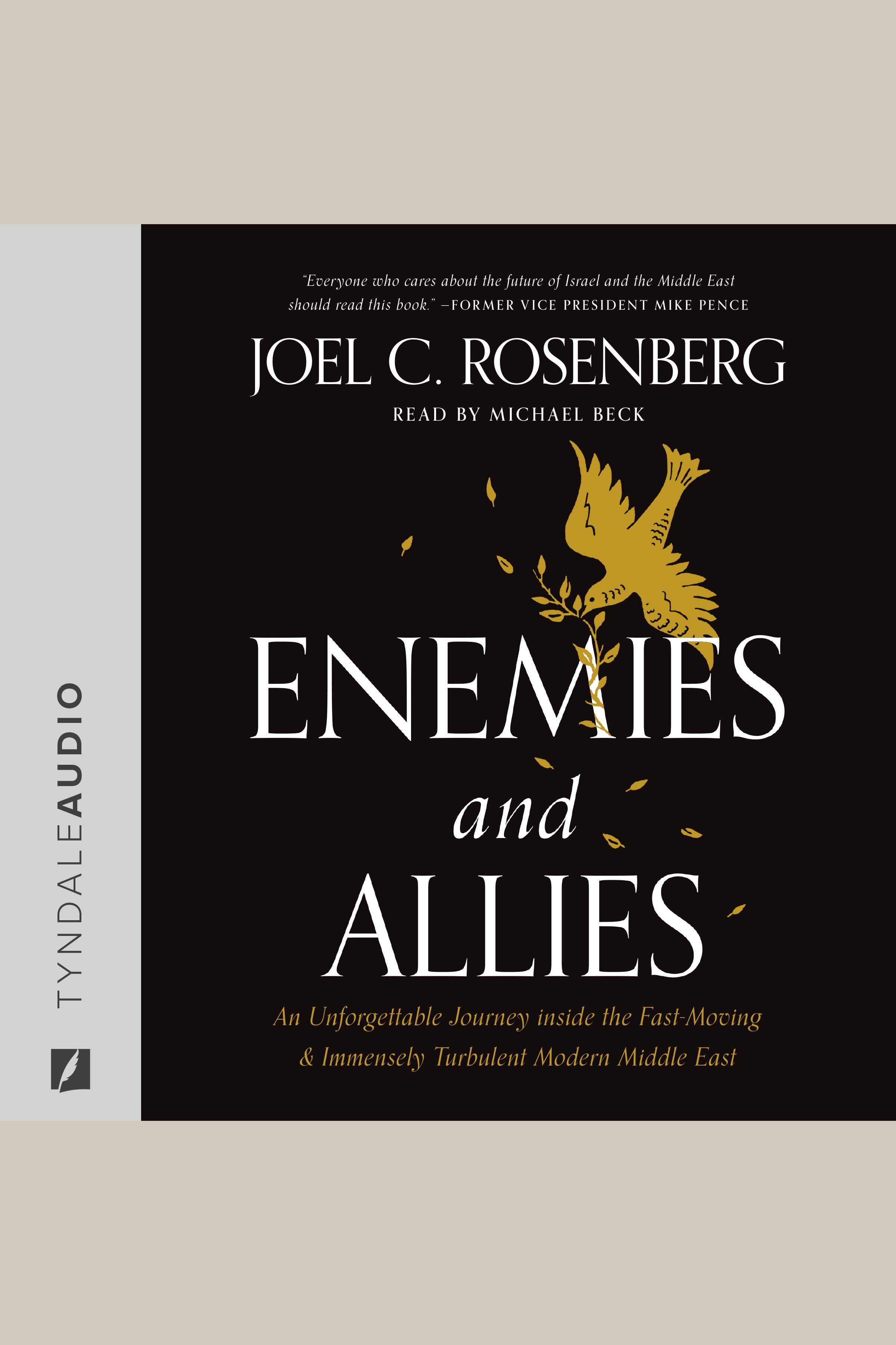 Enemies and Allies An Unforgettable Journey inside the Fast-Moving & Immensely Turbulent Modern Middle East