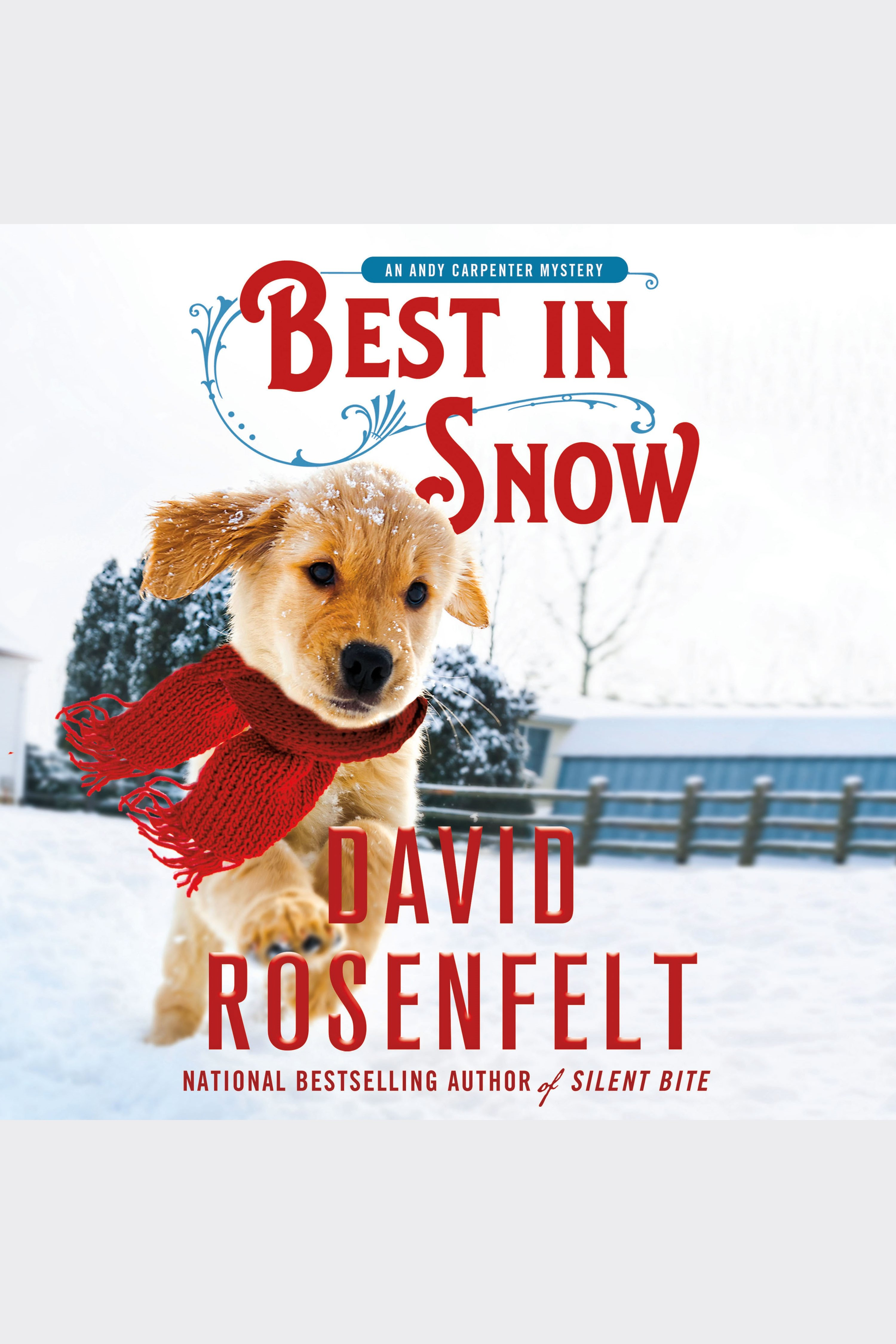 Best in Snow An Andy Carpenter Mystery