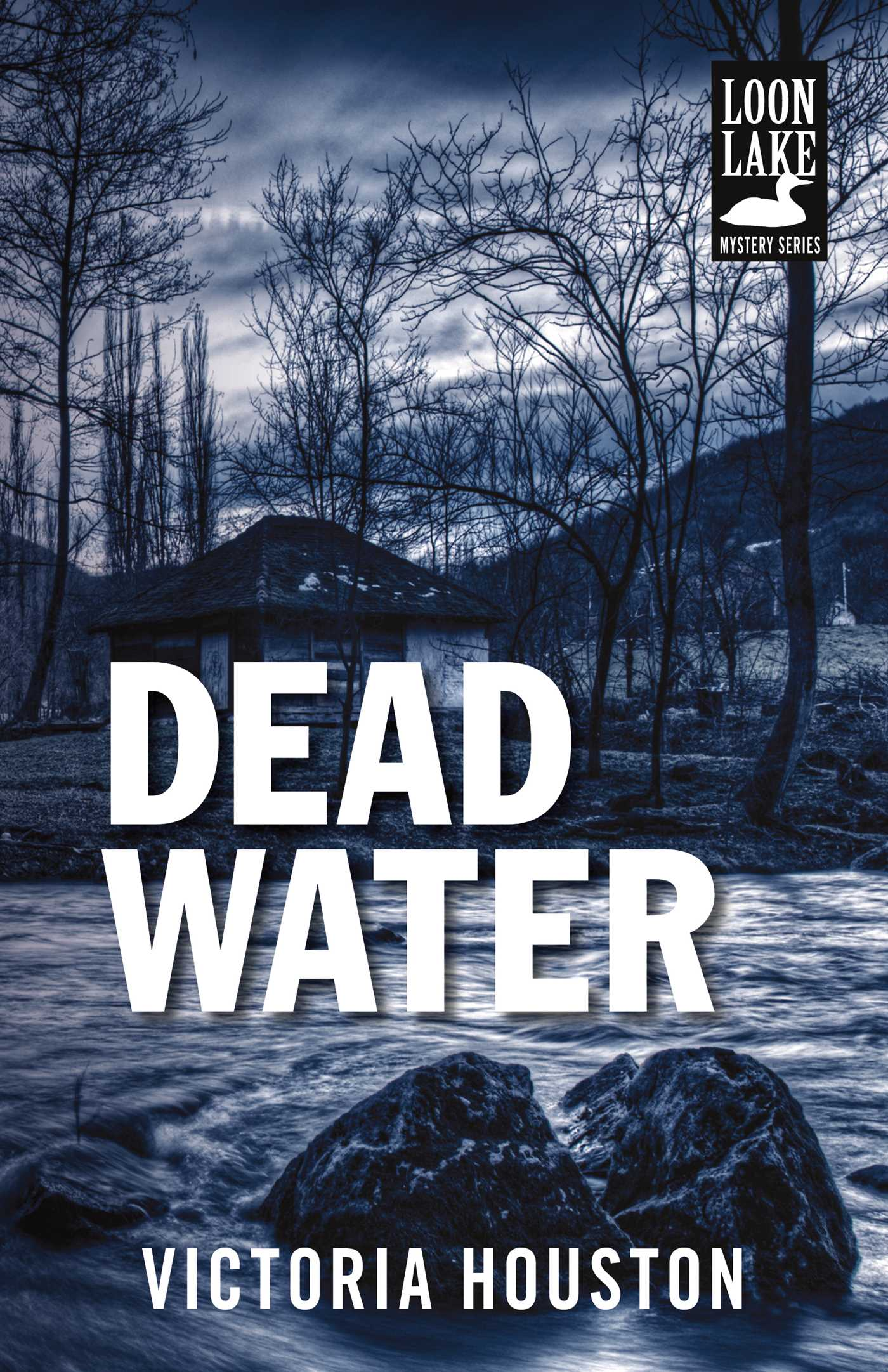 Cover image for Dead Water [electronic resource] :