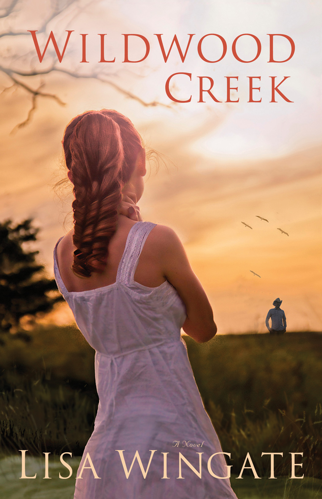 Wildwood Creek (The Shores of Moses Lake Book #4)