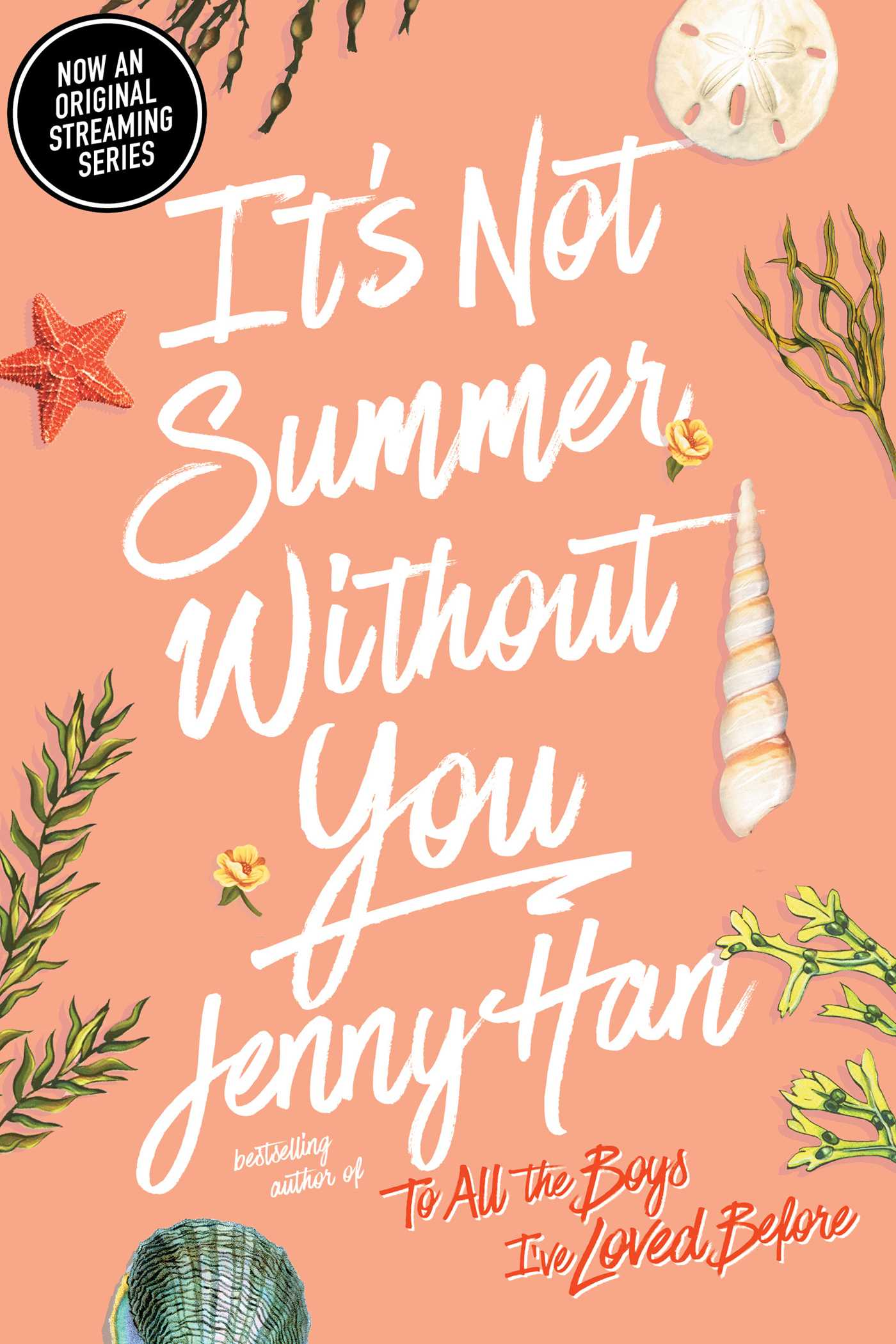 It's Not Summer Without You cover image