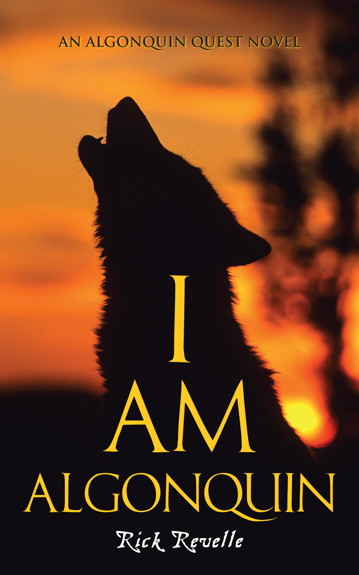 Cover Image of I Am Algonquin