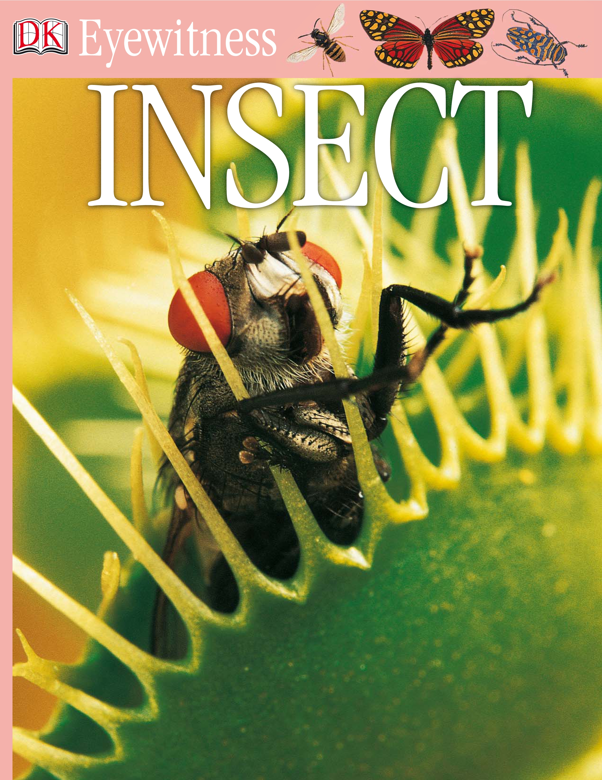Cover Image of DK Eyewitness Books: Insect