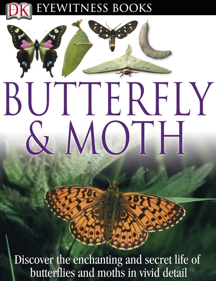 Cover Image of DK Eyewitness Books: Butterfly and Moth