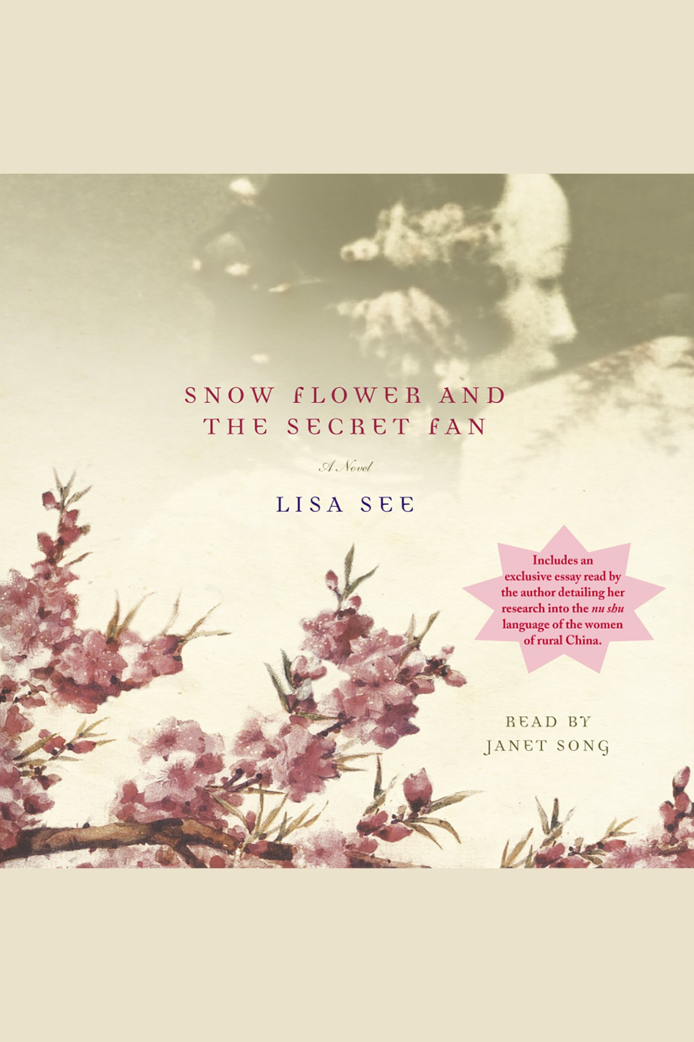 Snow flower and the secret fan cover image