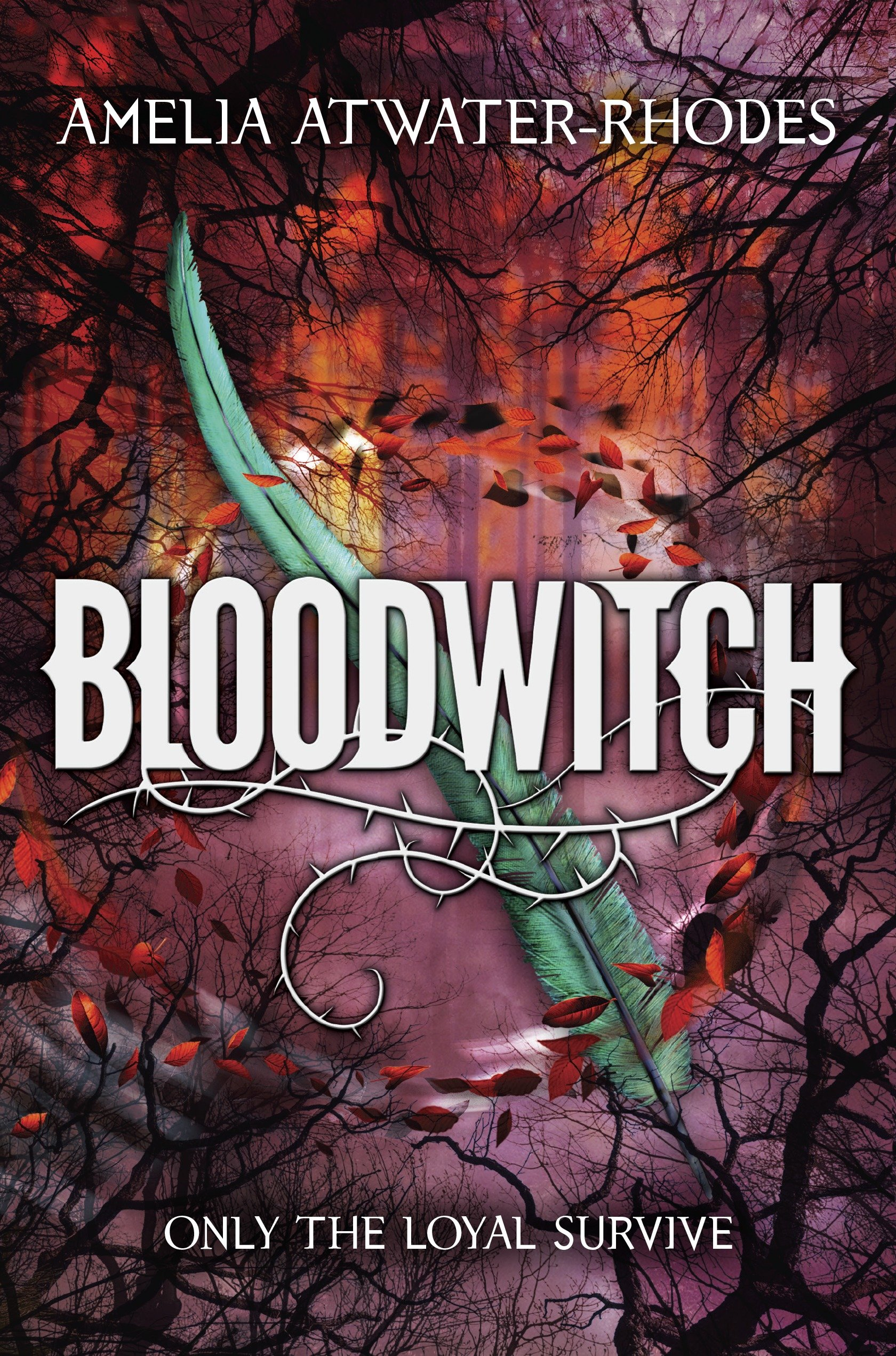 Cover Image of Bloodwitch (Book 1)