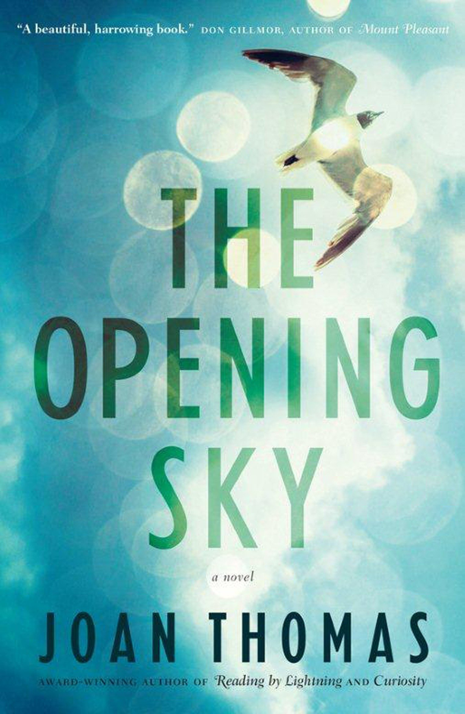 Cover Image of The Opening Sky