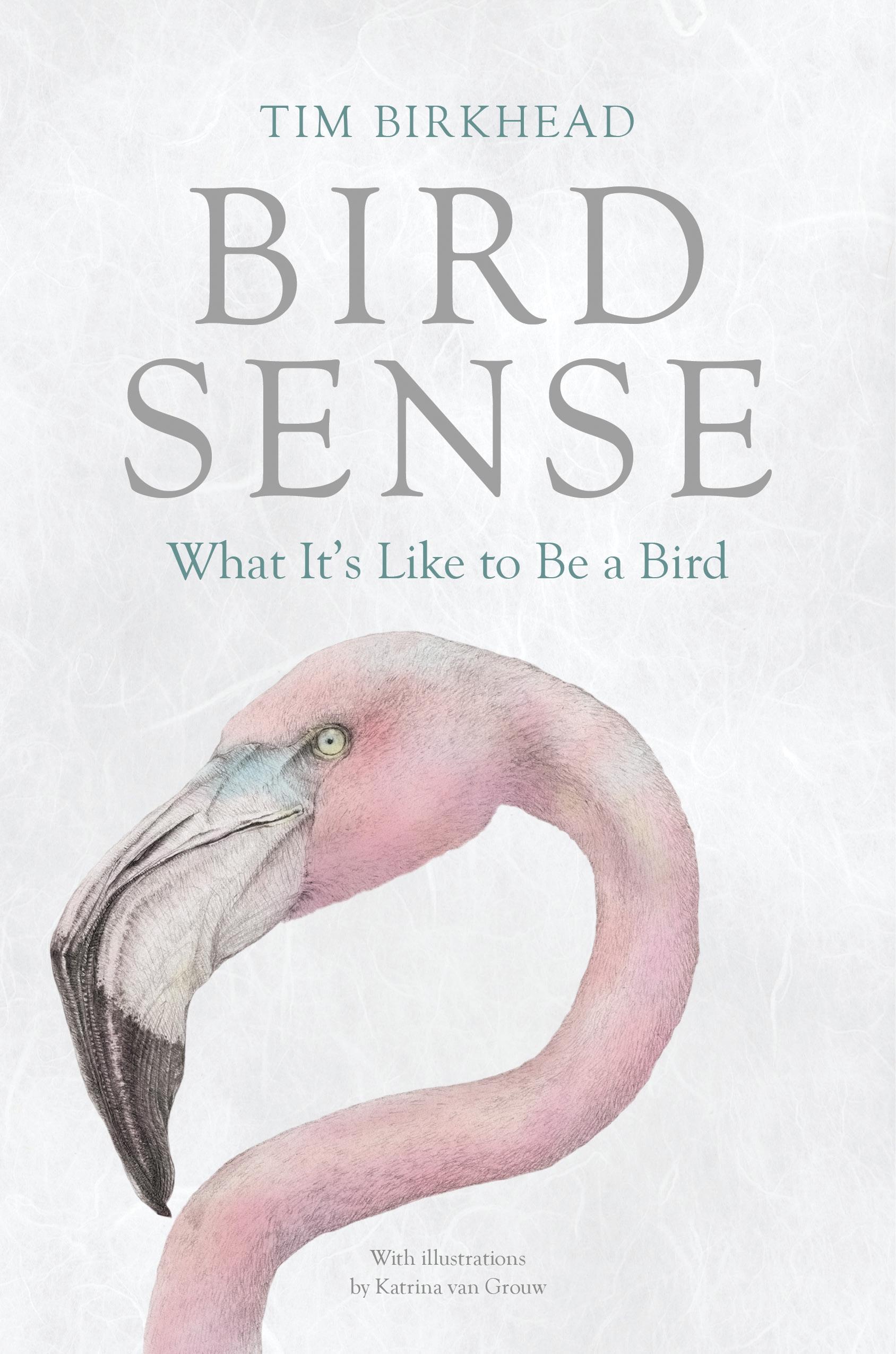 Cover Image of Bird Sense