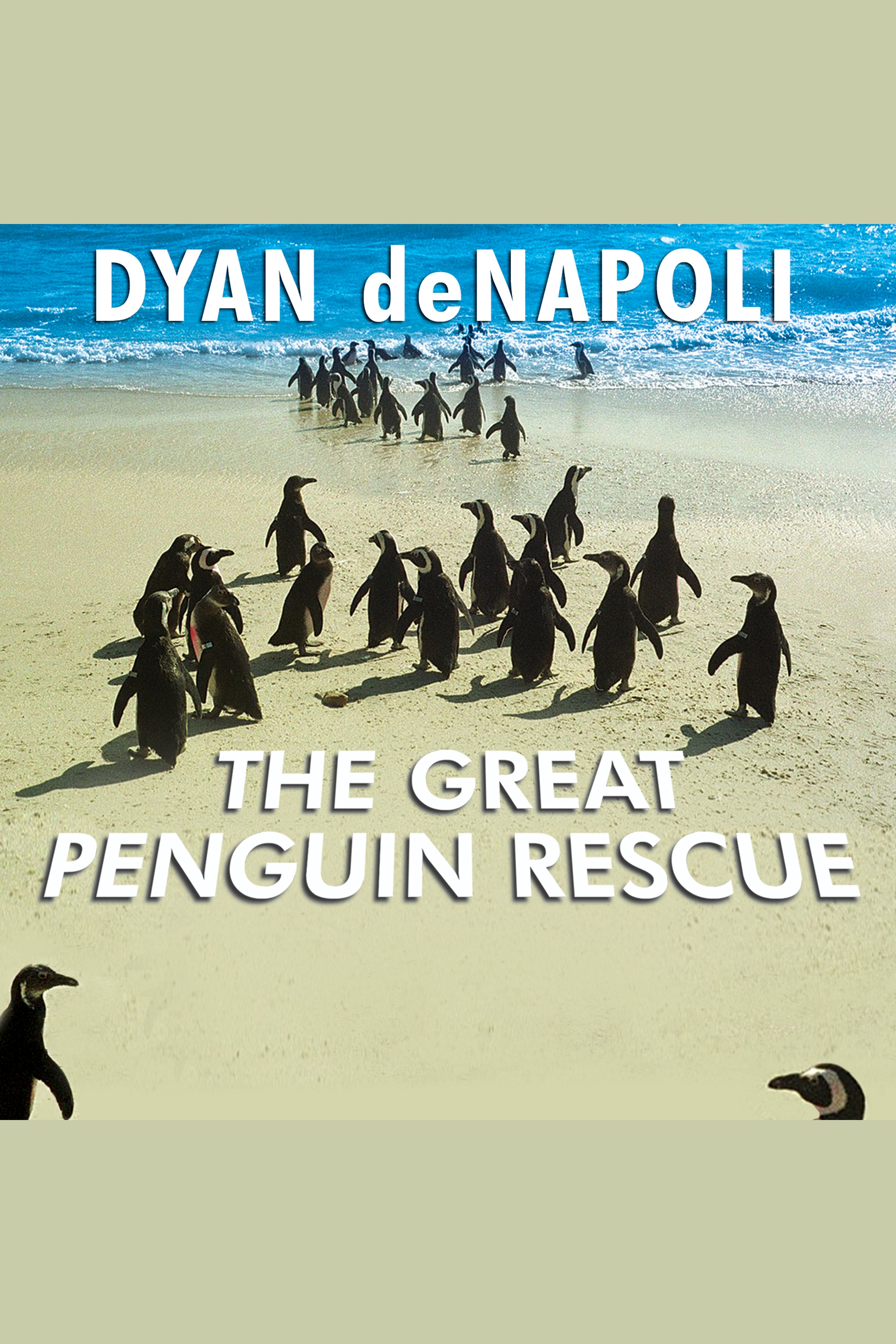 Great Penguin Rescue, The