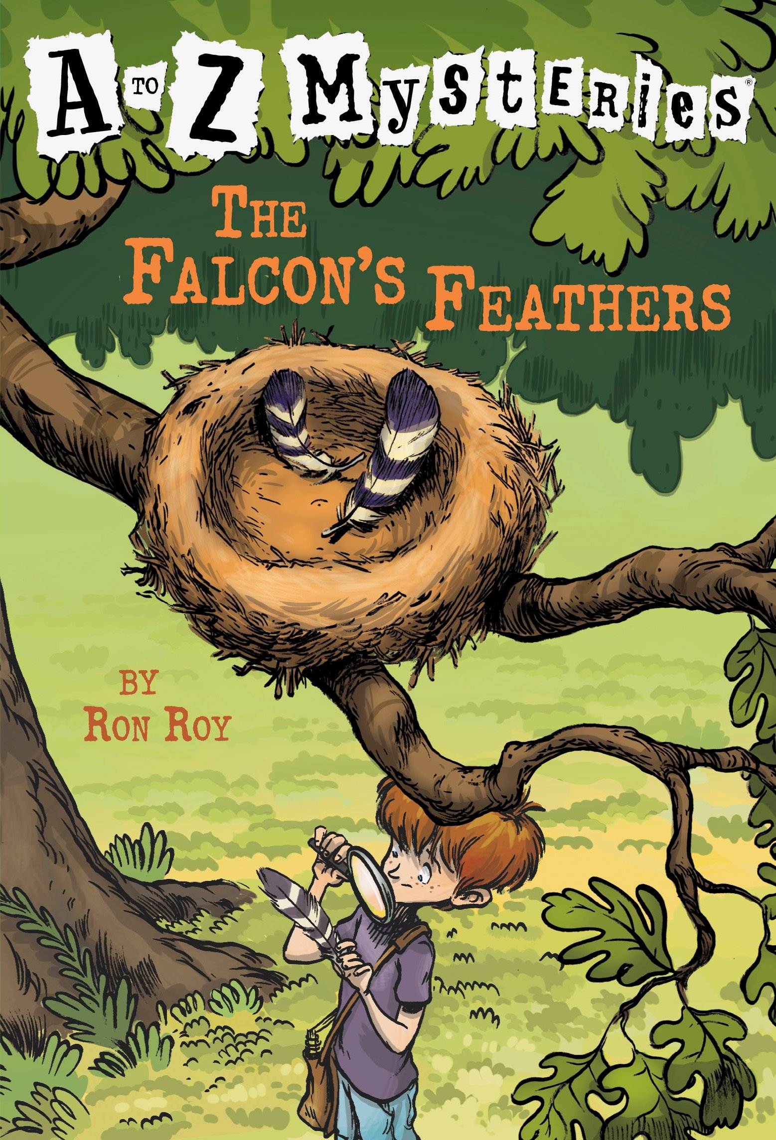 The Falcon's Feathers cover image