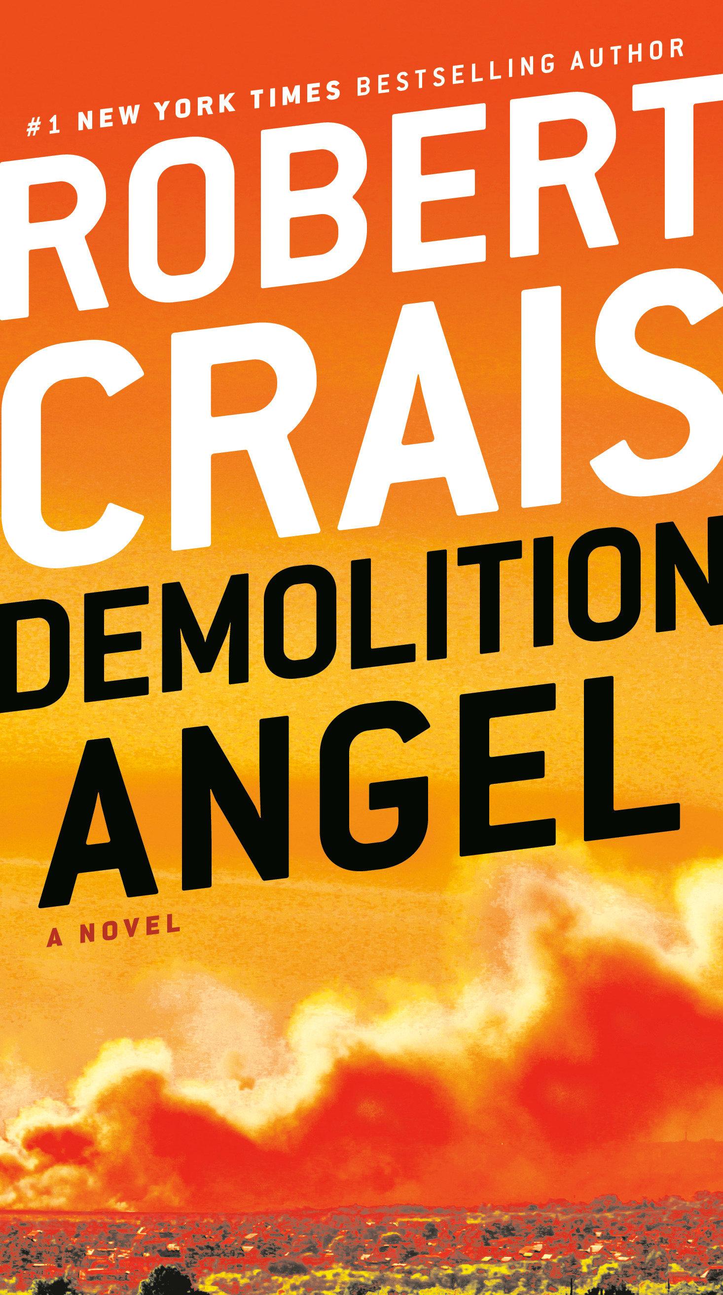 Demolition angel cover image