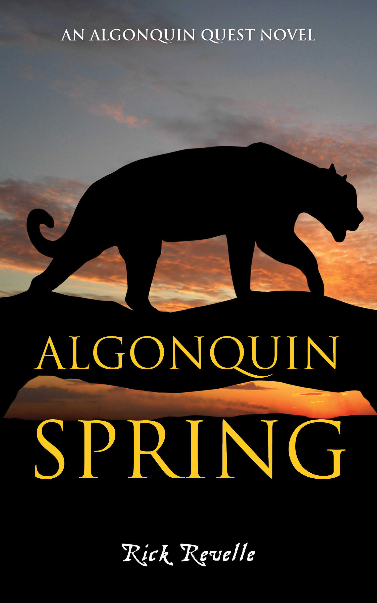 Cover Image of Algonquin Spring