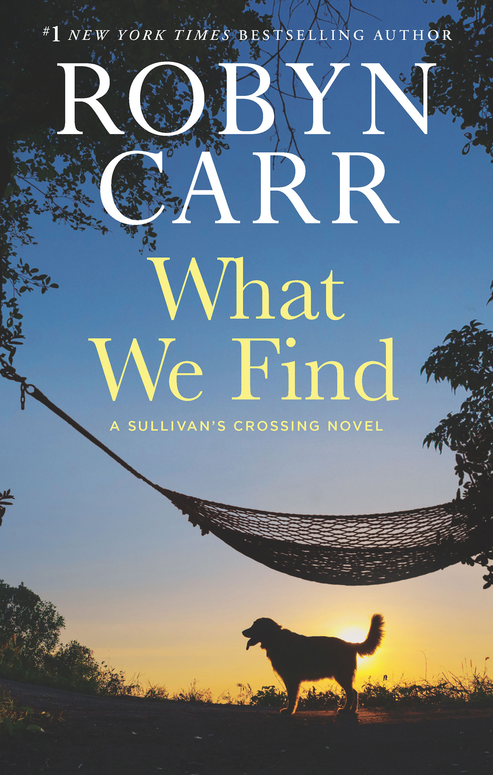Cover Image of What We Find