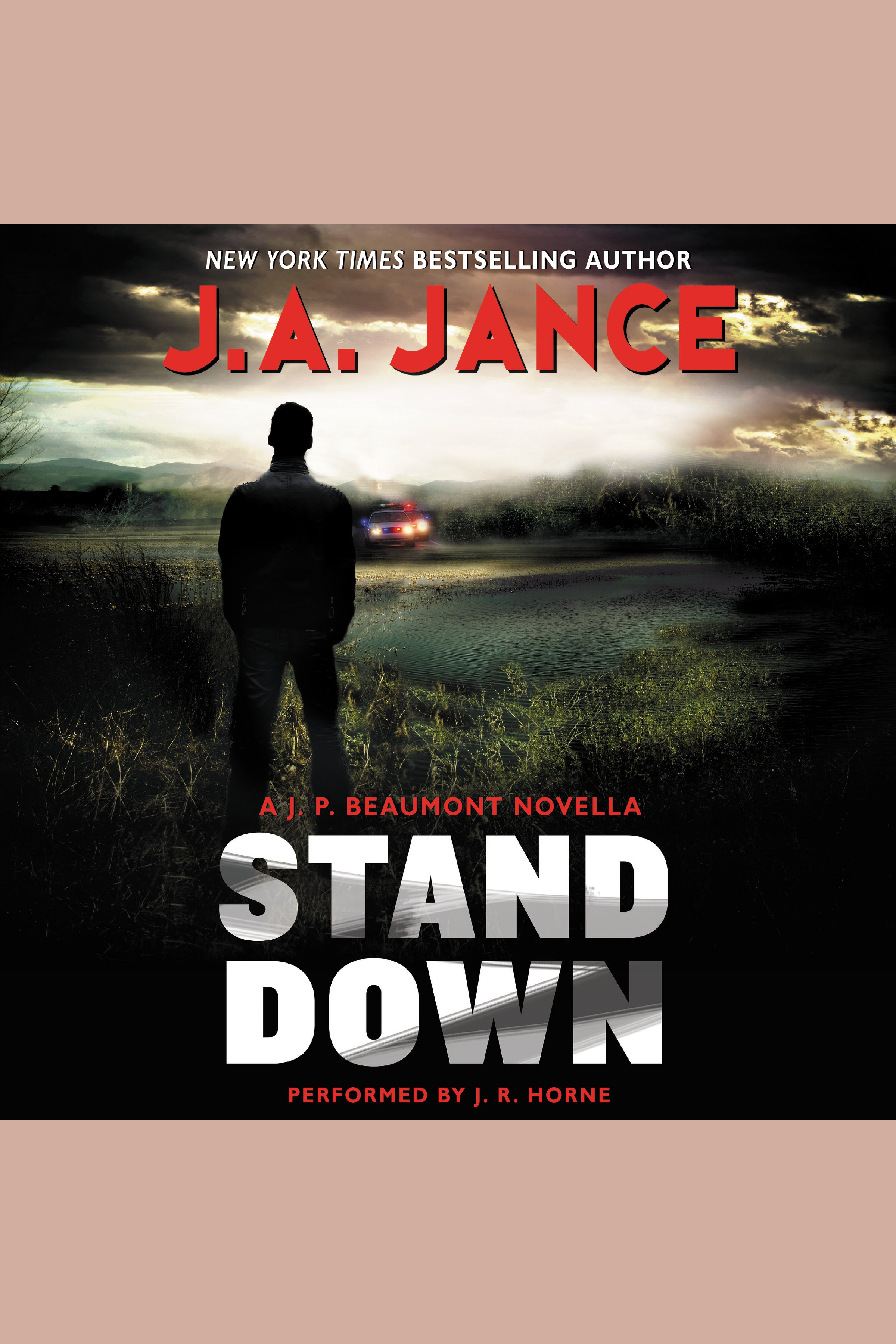 Stand Down A J.P. Beaumont Novella
