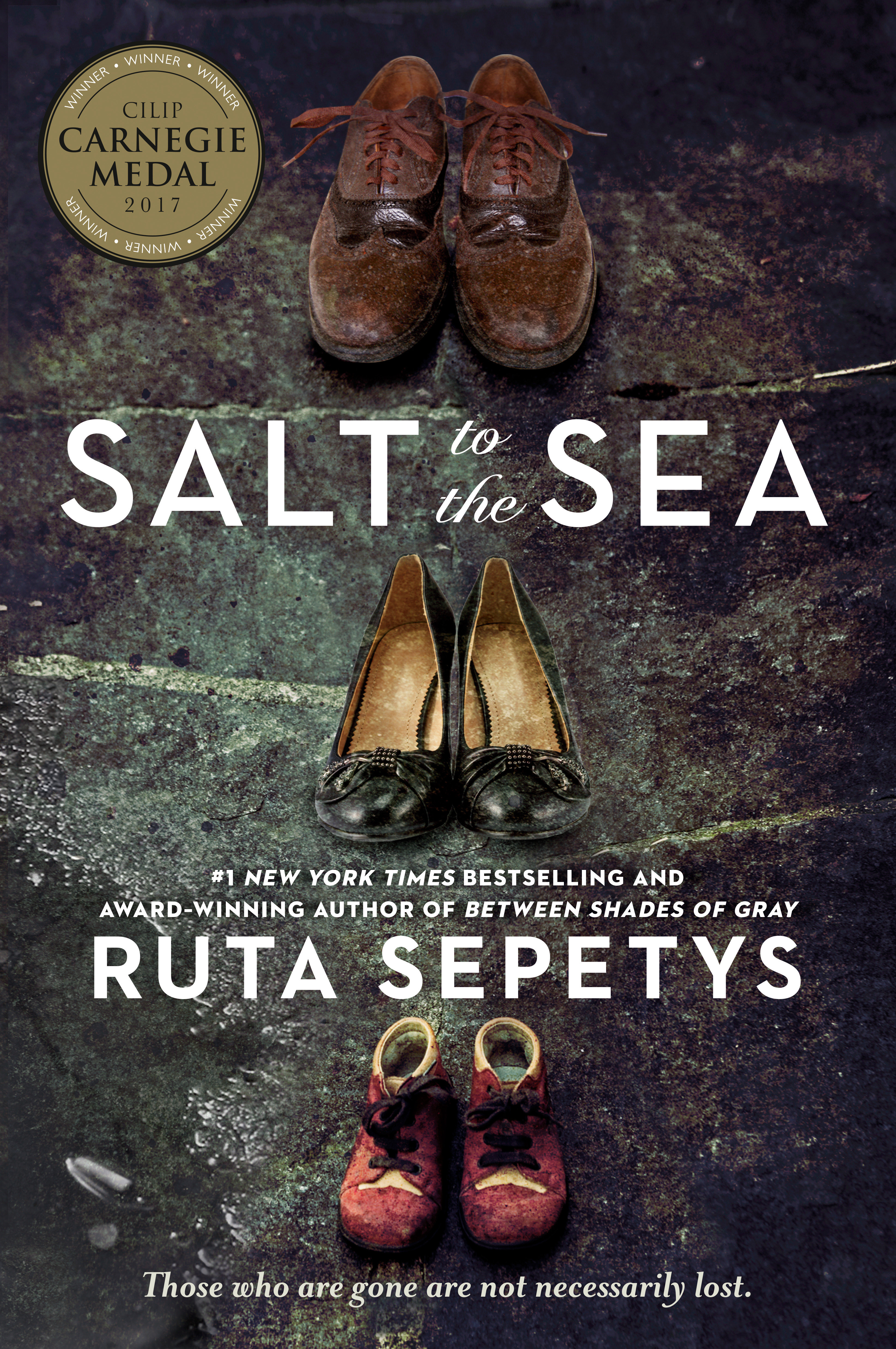 Cover Image of Salt to the Sea