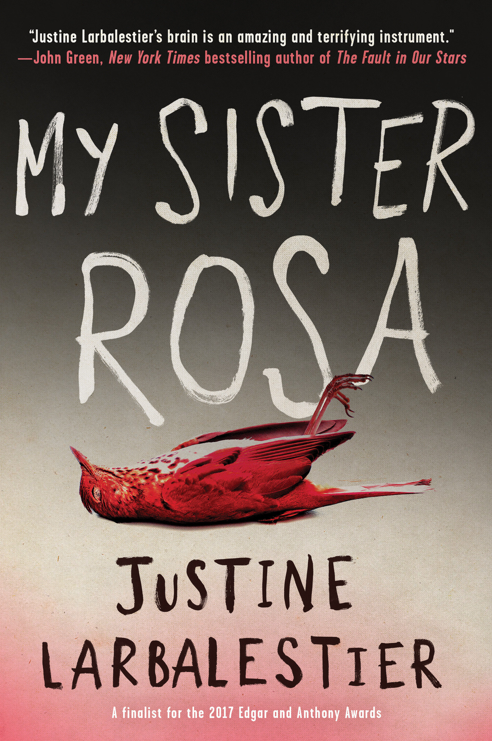 My sister Rosa cover image