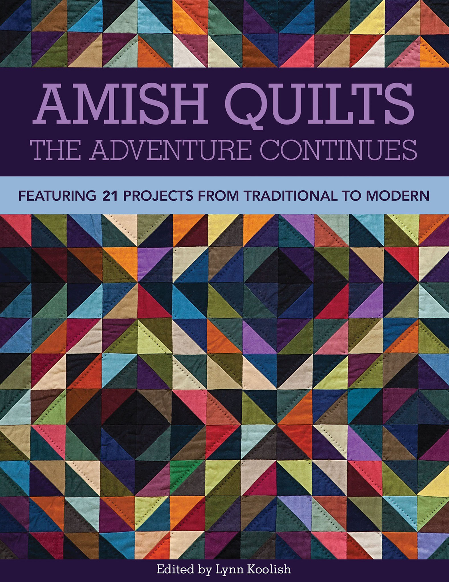 Amish Quilts—The Adventure Continues Featuring 21 Projects from Traditional to Modern