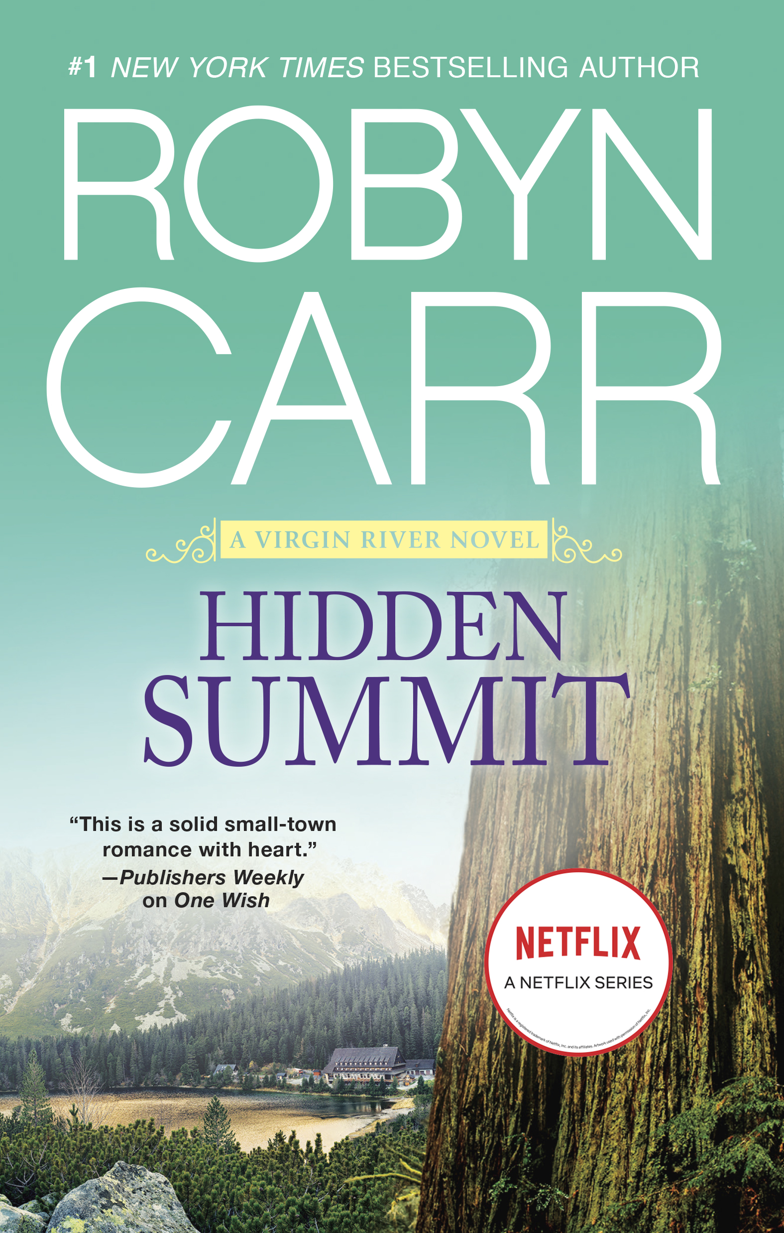 Cover Image of Hidden Summit