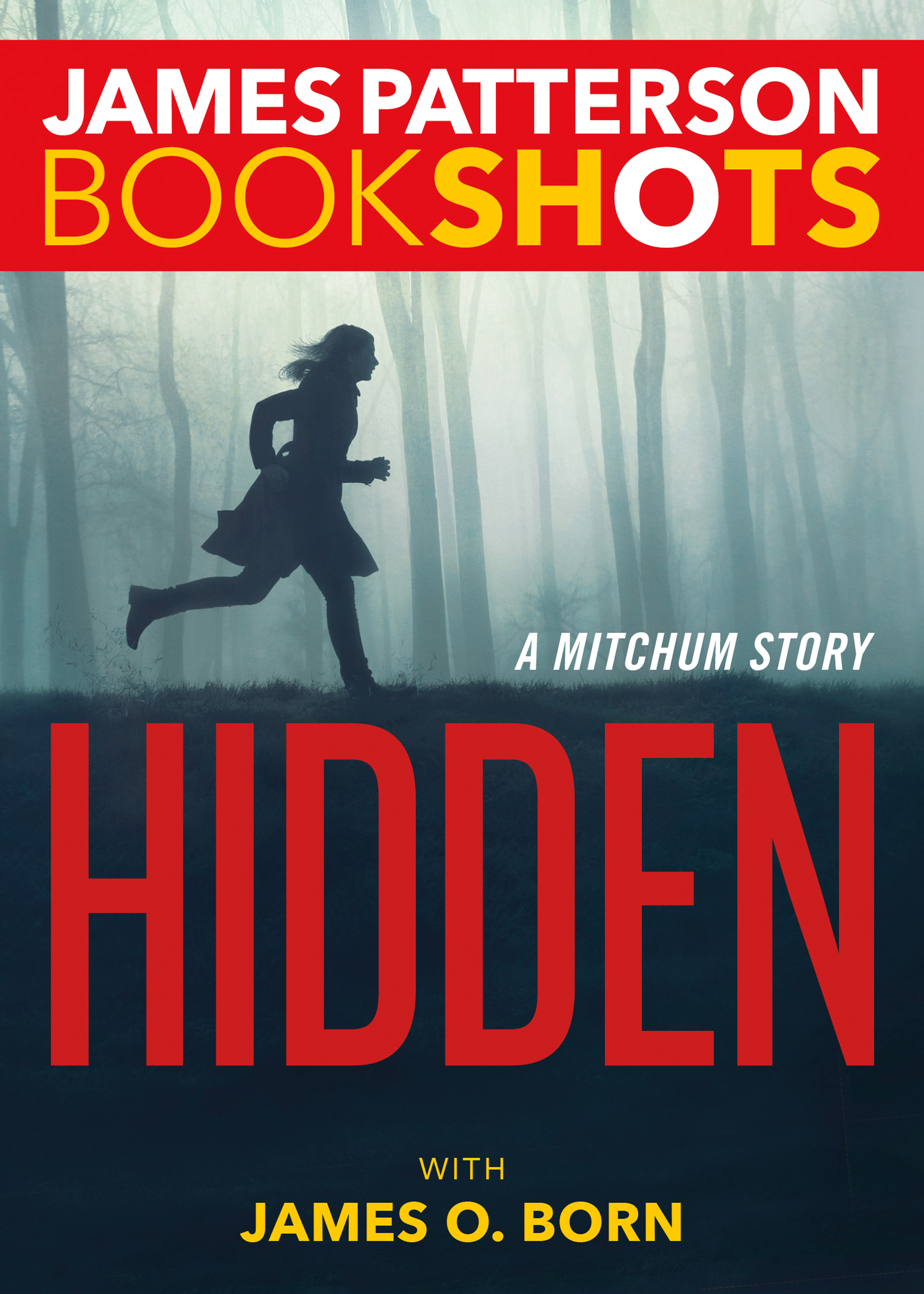 Cover image for Hidden [electronic resource] : A Mitchum Story