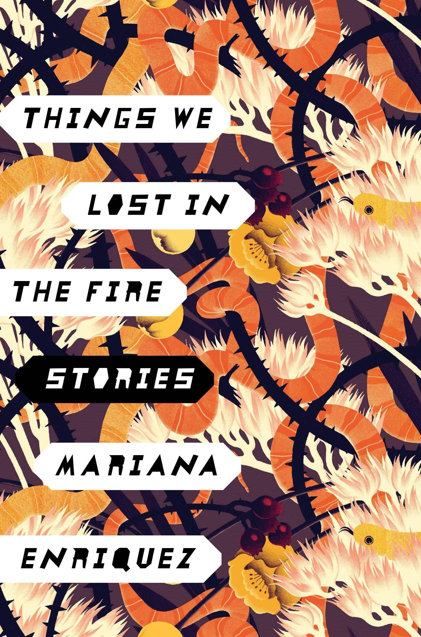 Cover Image of Things We Lost in the Fire