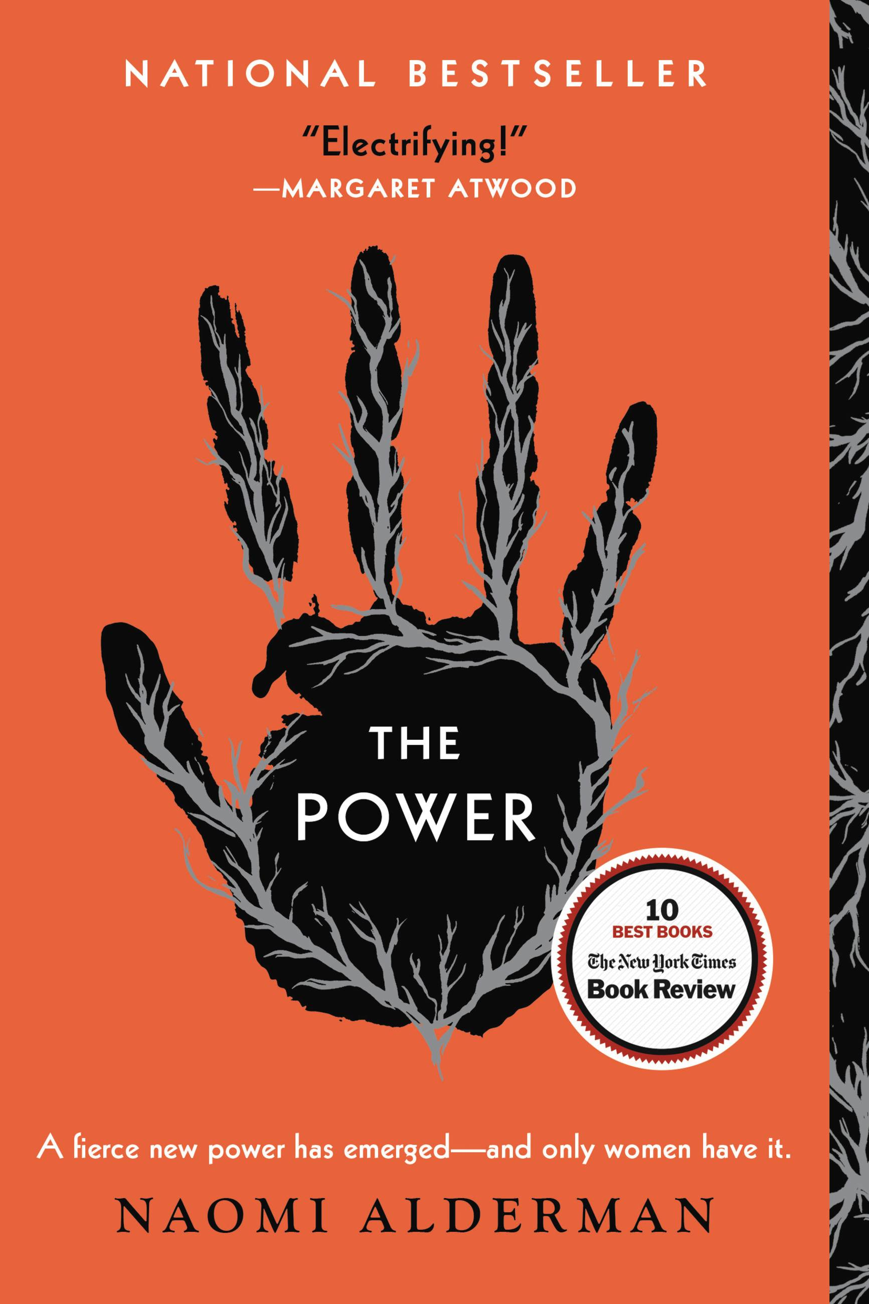 The power [eBook] : a novel