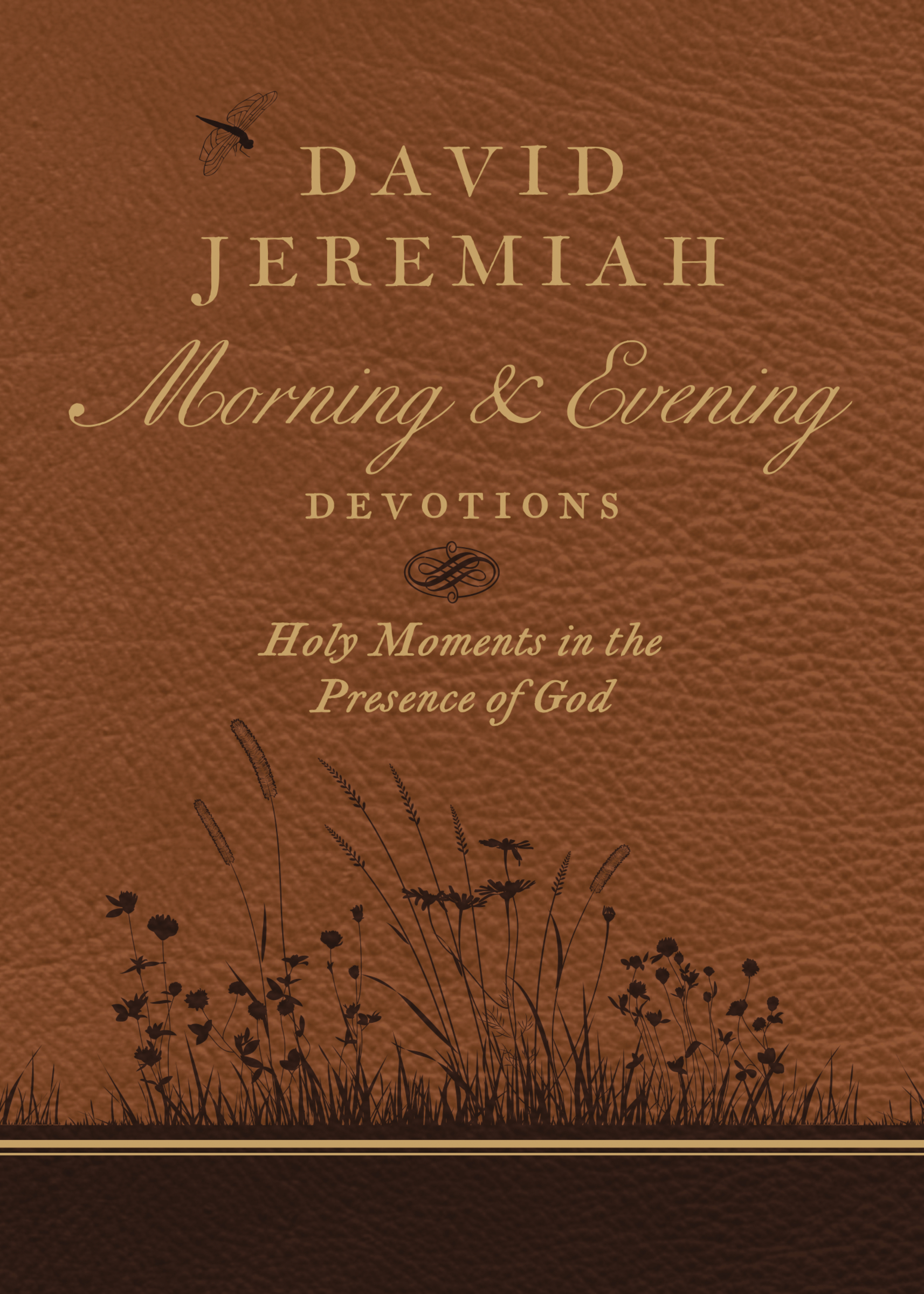 David Jeremiah Morning and Evening Devotions Holy Moments in the Presence of God