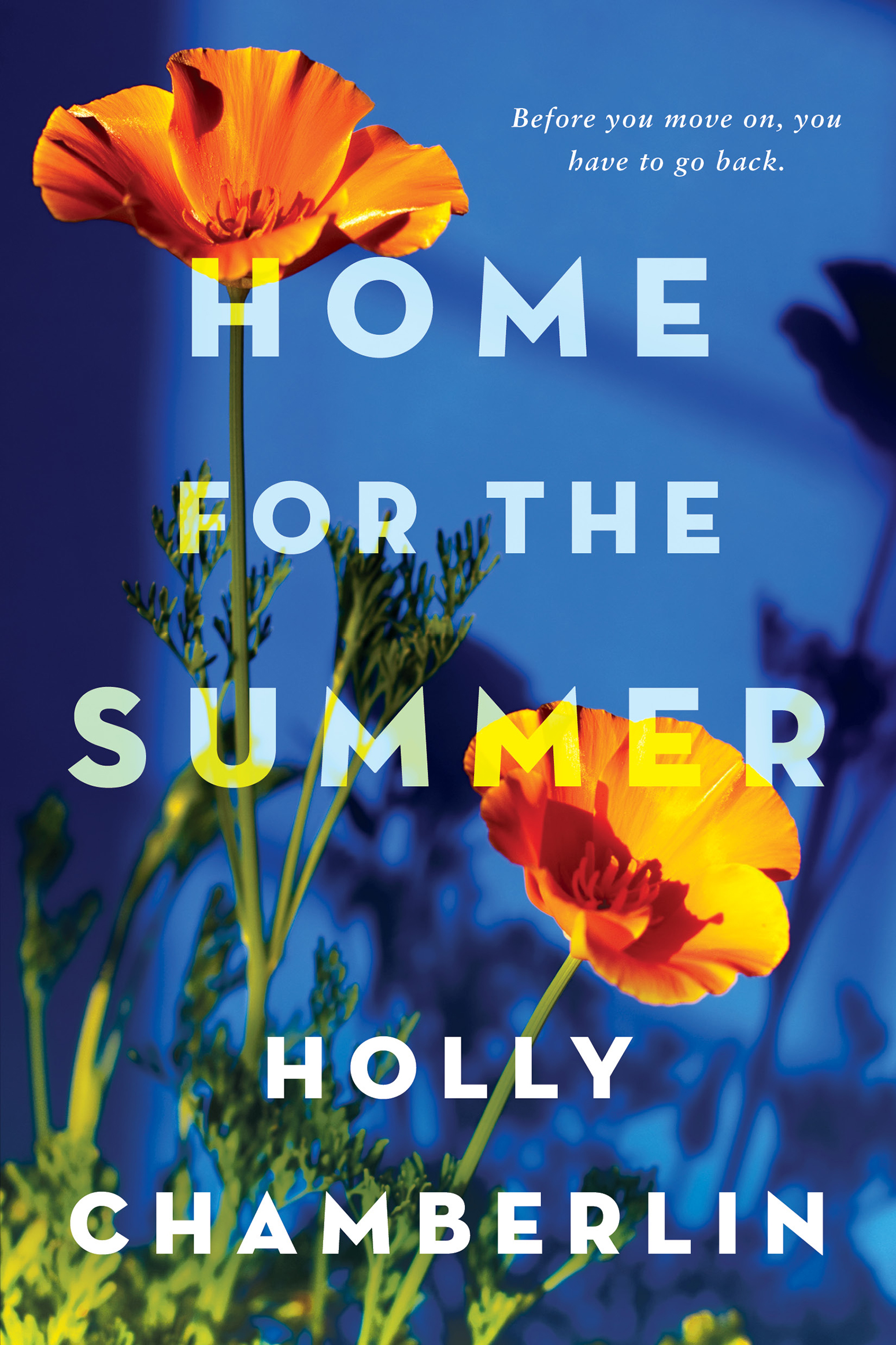 Home for the summer cover image