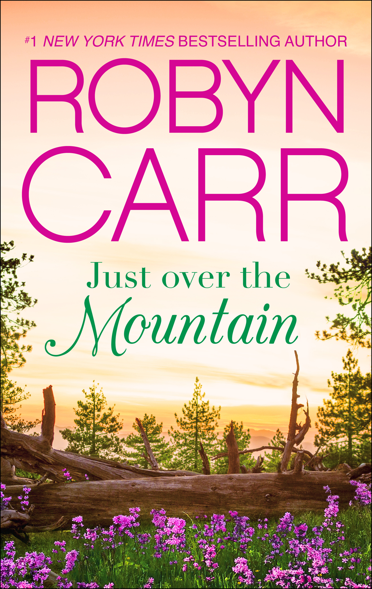 Cover Image of Just Over the Mountain