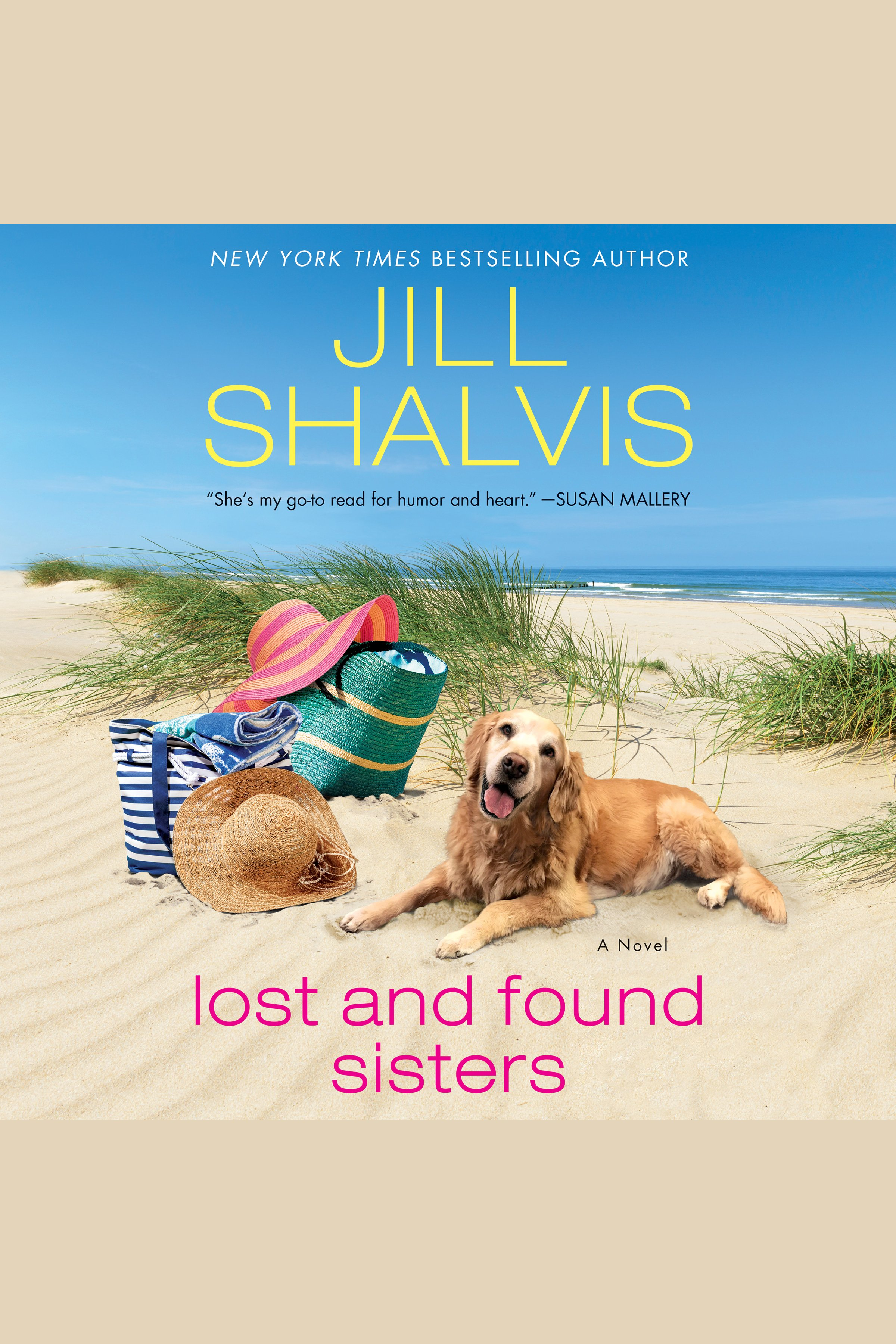 Lost and found sisters cover image