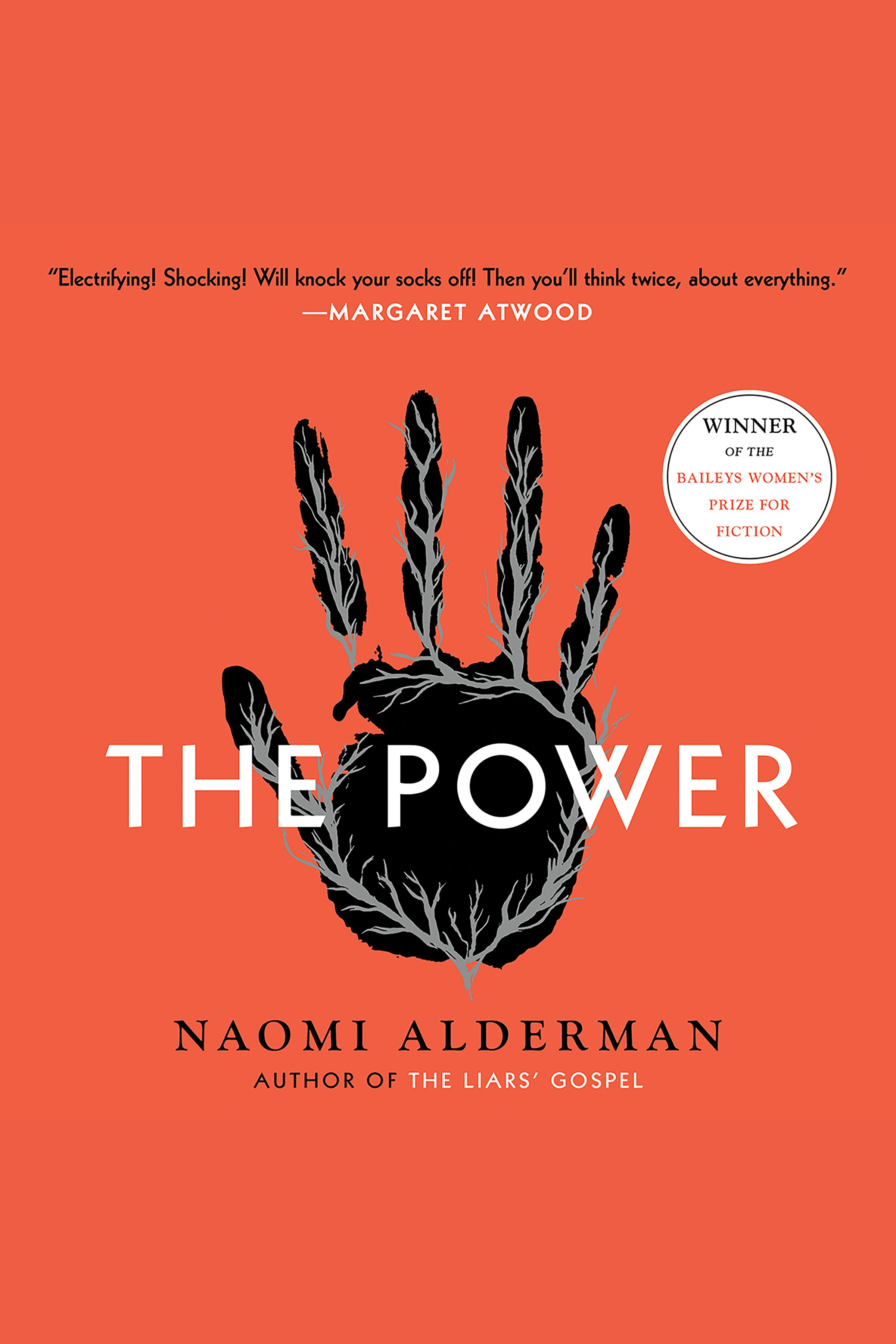 The power [AudioEbook] : a novel