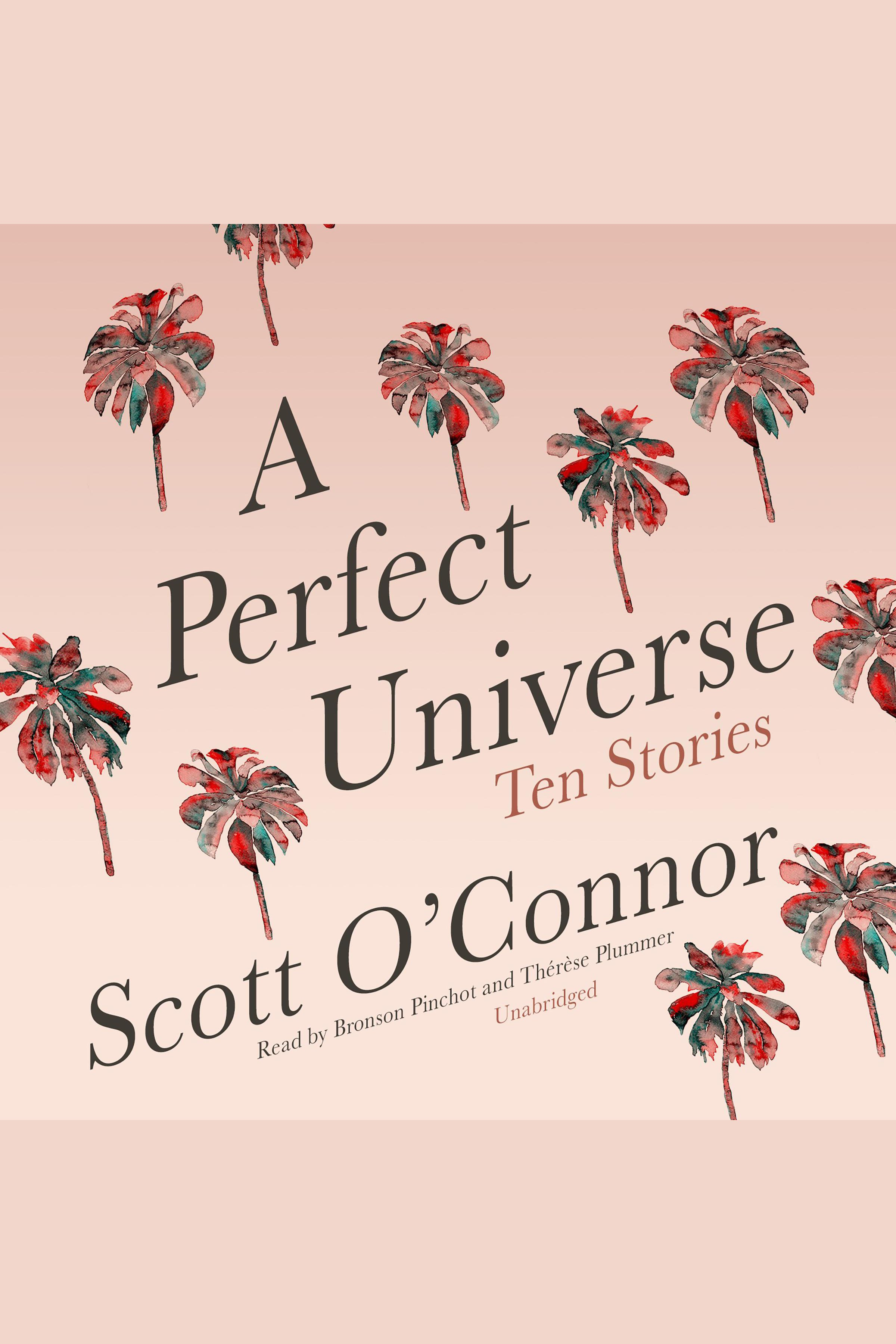 Perfect Universe, A Ten Stories cover image
