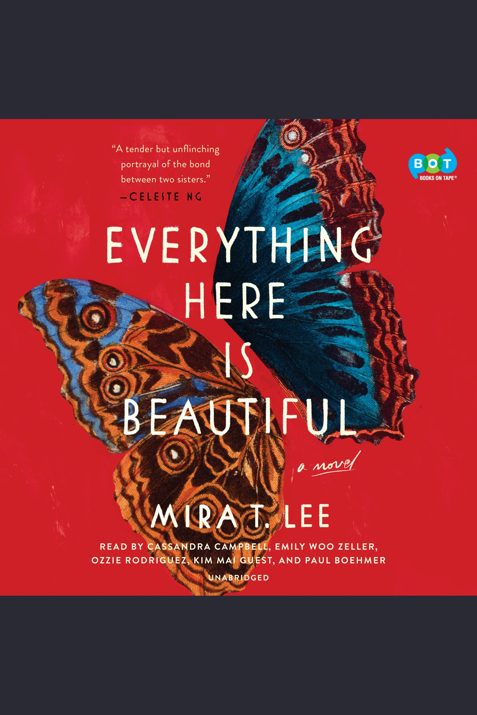 Everything here is beautiful cover image