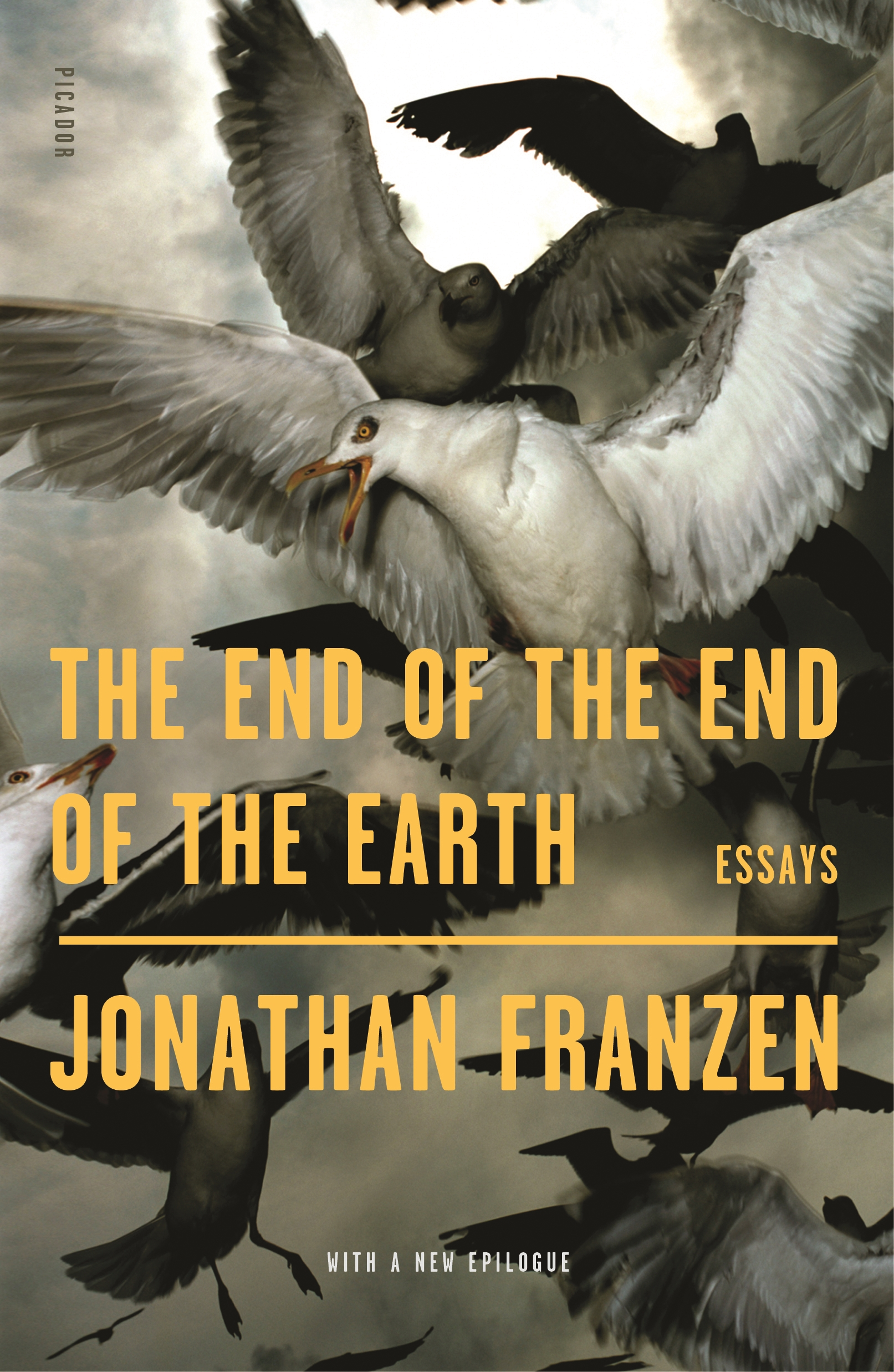 The end of the end of the earth essays cover image