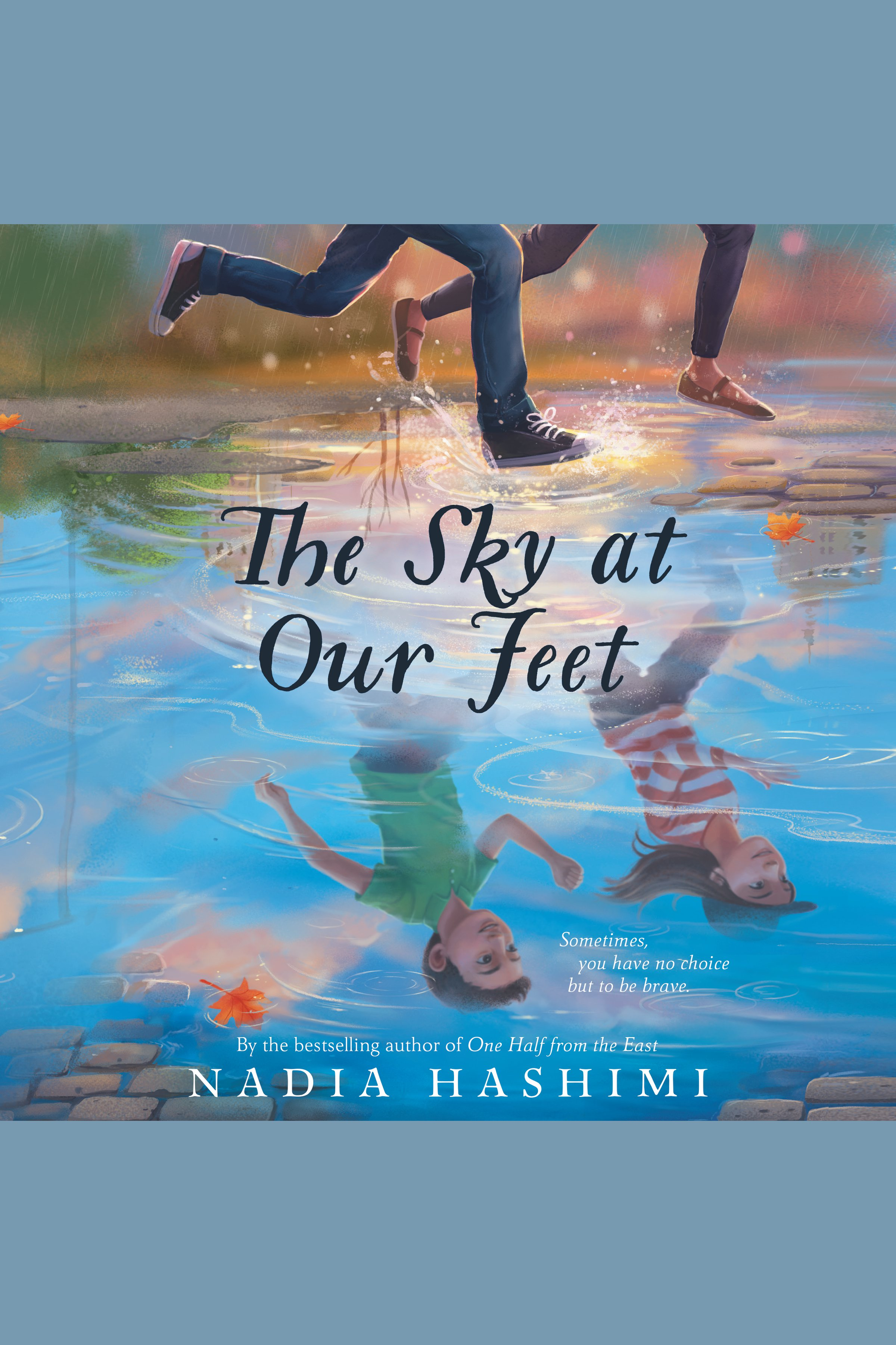 The sky at our feet cover image