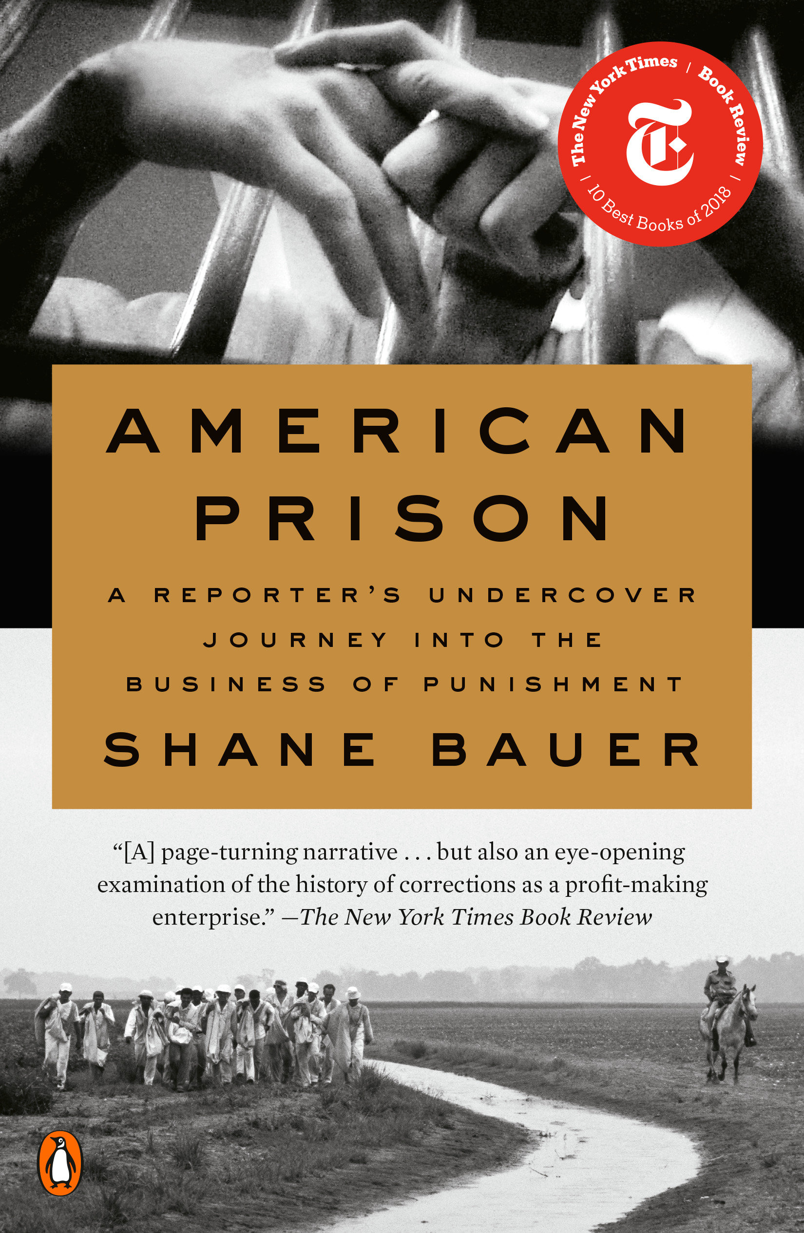 American Prison [electronic resource] : A Reporter's Undercover Journey into the Business of Punishment