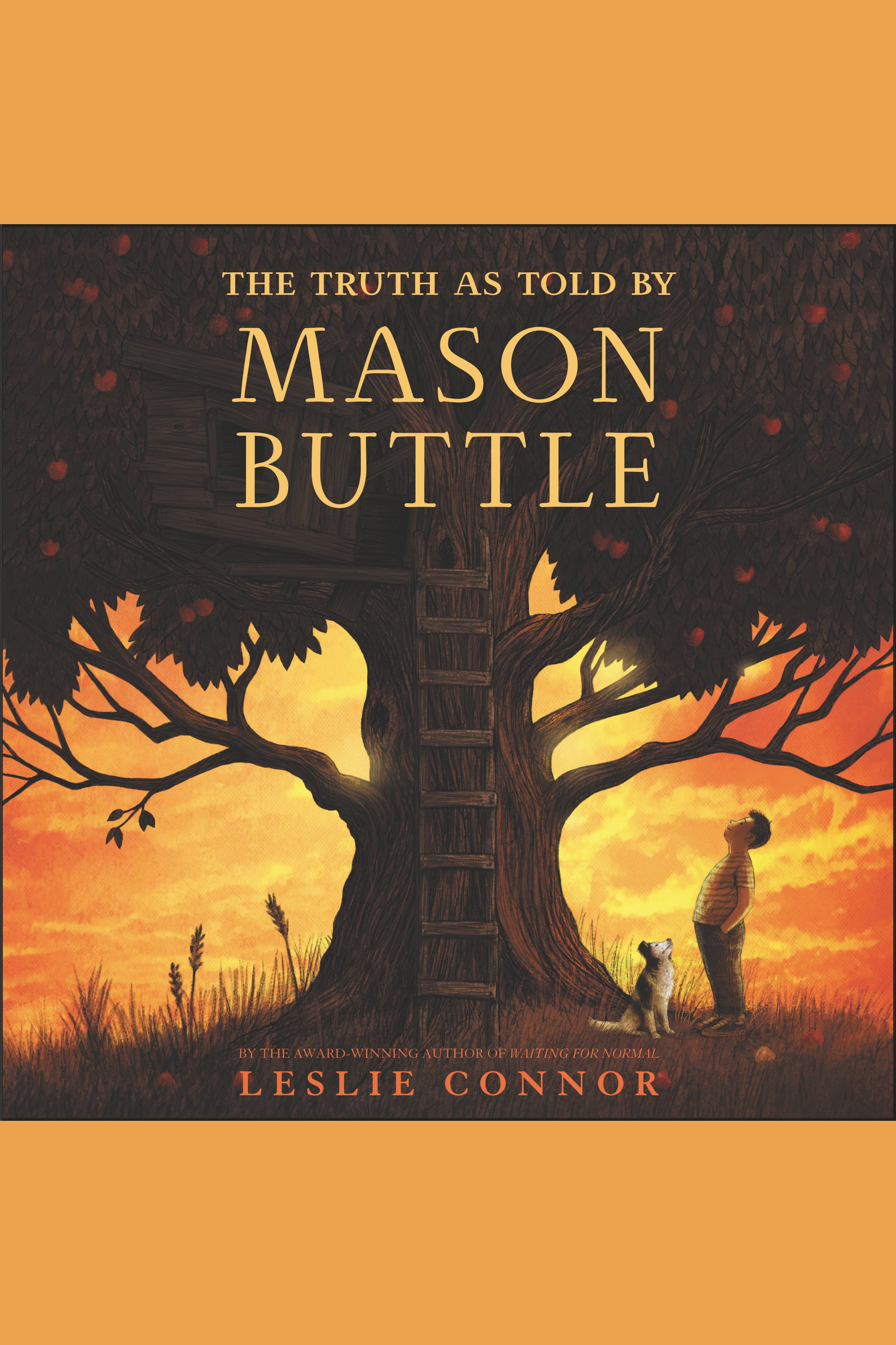 The truth as told by Mason Buttle cover image