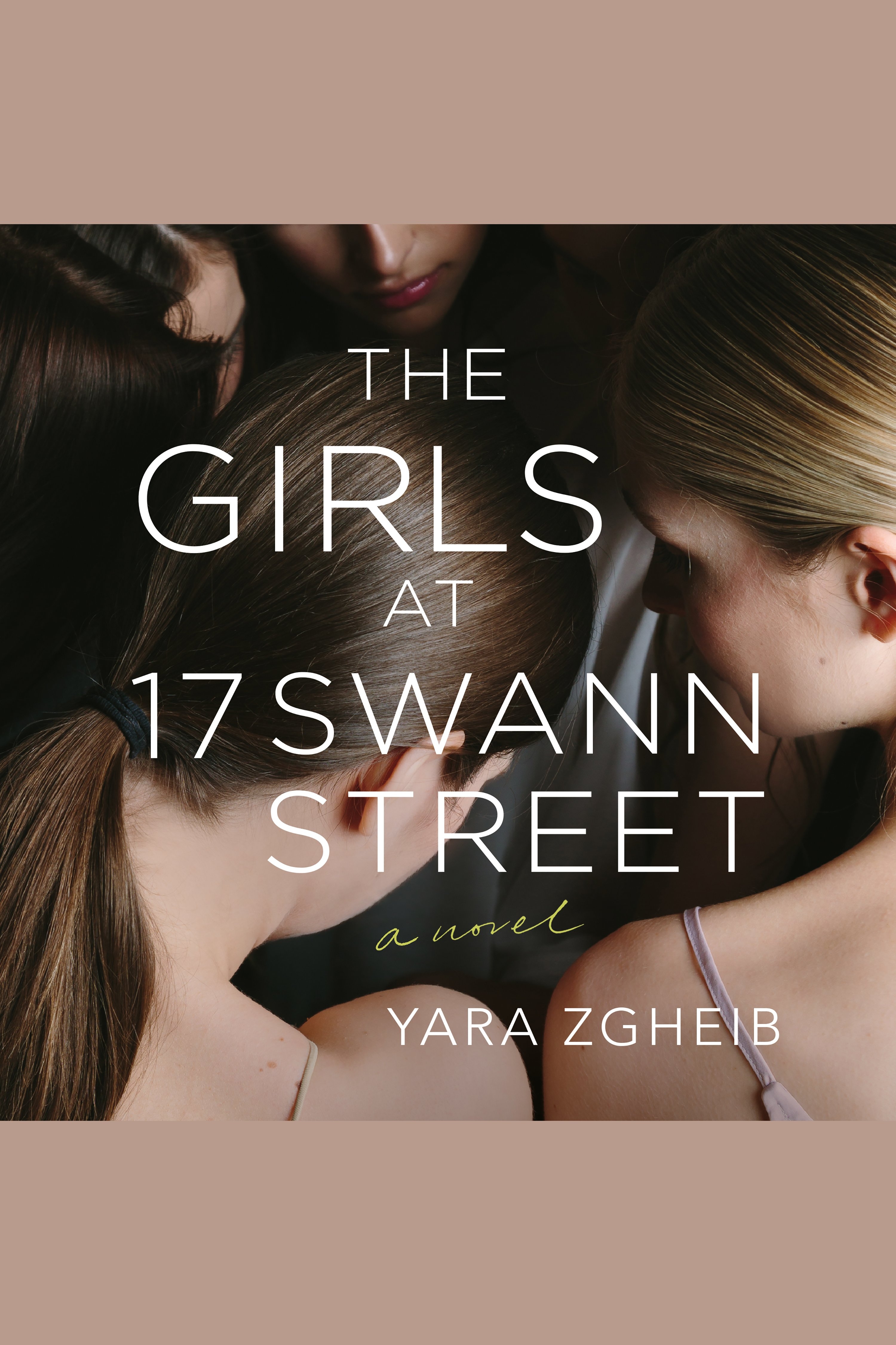 Girls at 17 Swann Street, The [electronic resource] : A Novel
