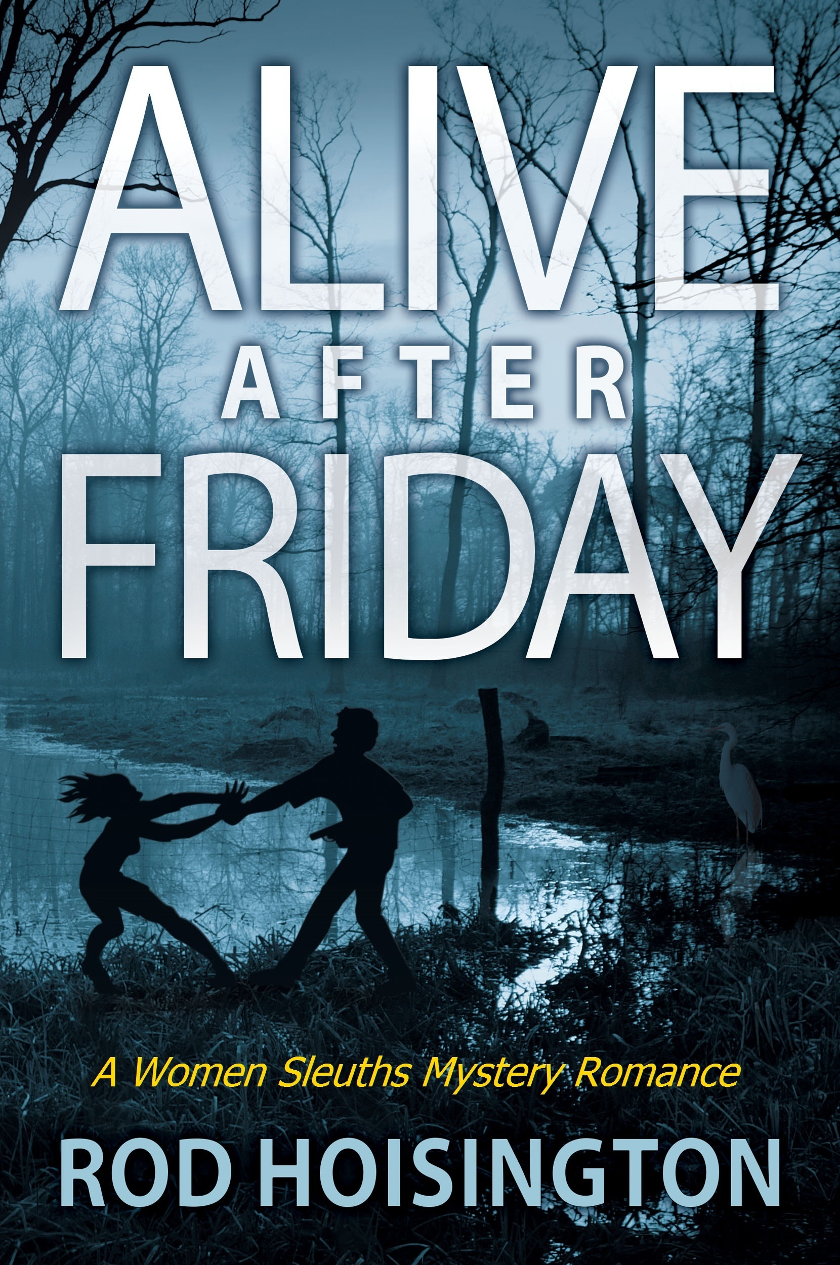 Alive After Friday A Women Sleuths Mystery Romance (Sandy Reid Mystery Series #5) [electronic resource]