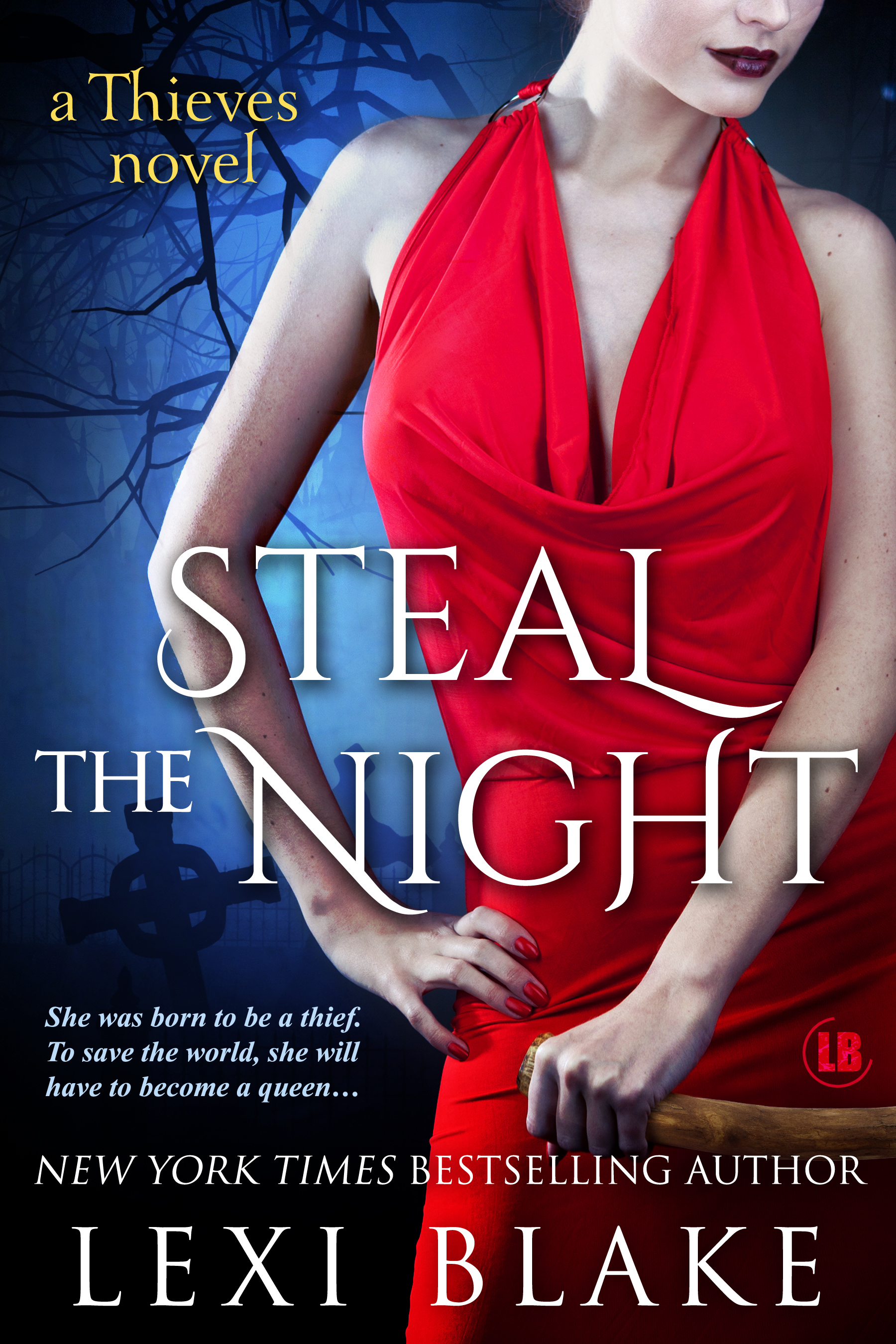 Cover Image of Steal the Night, Thieves, Book 5